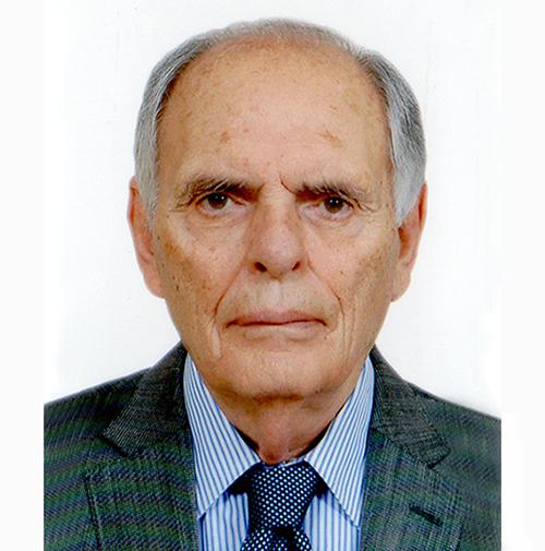 Διευθύνων Σύμβουλος   Πέτρος Βενετσάνος  pvenetsanos@avenco.gr