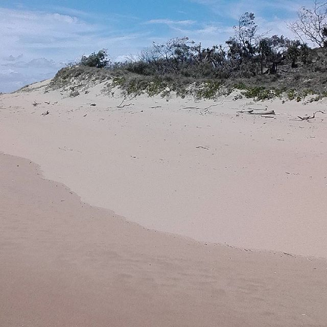 Secluded beaches in Deepwater National Park