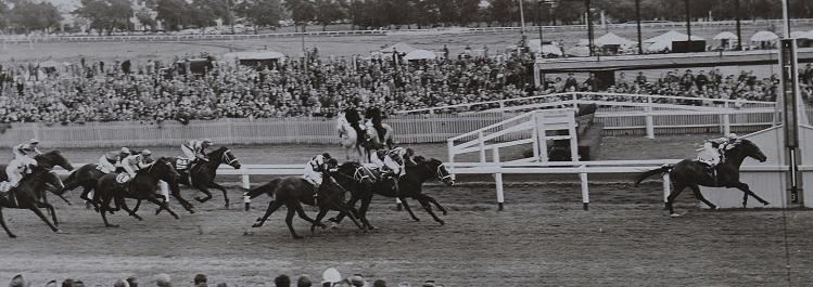 Helmast Winner Victoria Park Tombridge Handicap 1955