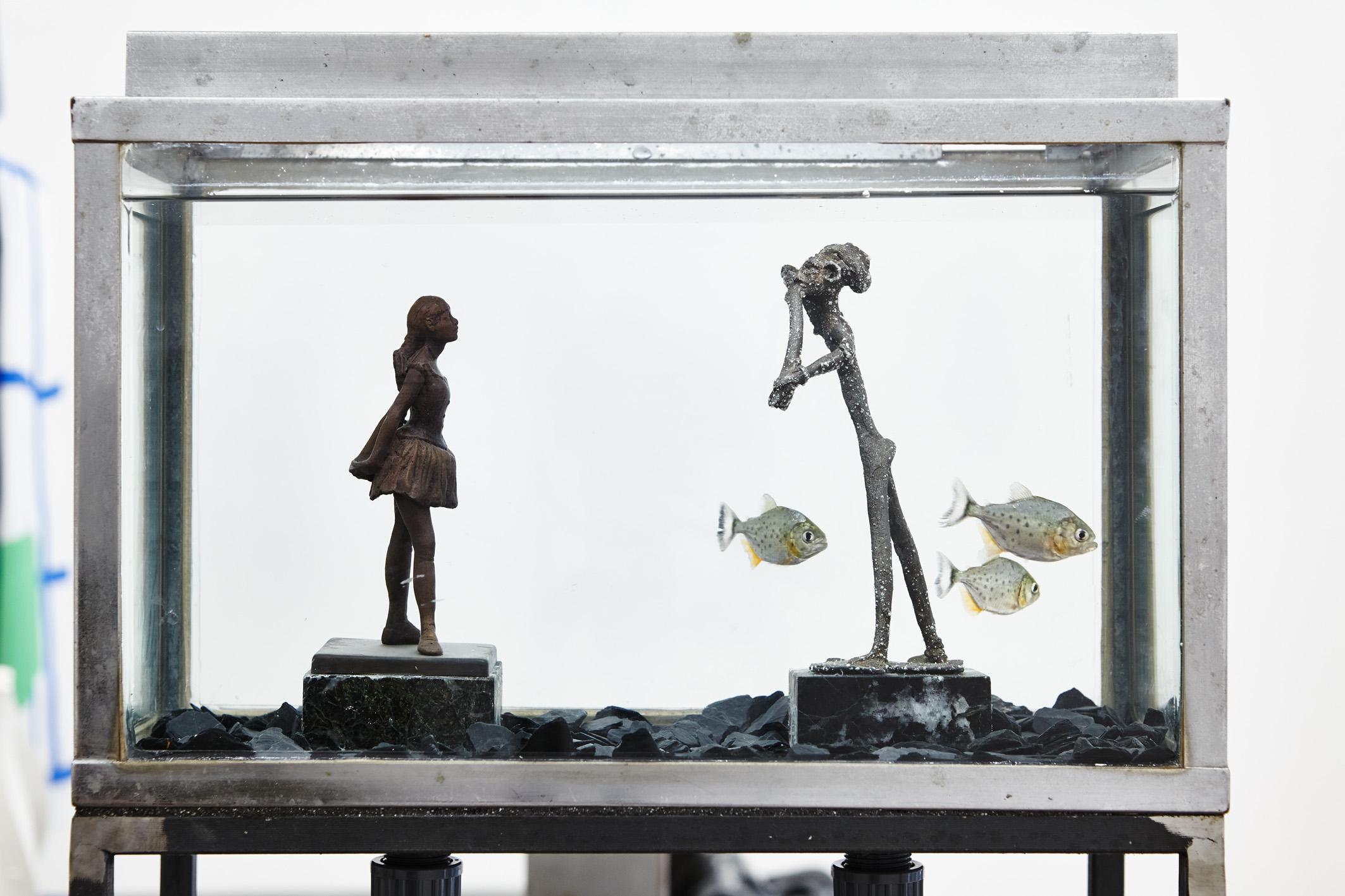 Thomas Mailaender,  Fish Museum#4 , 2017. Aquarium, métal, verre, 60 cm x 40 cm x 25 cm