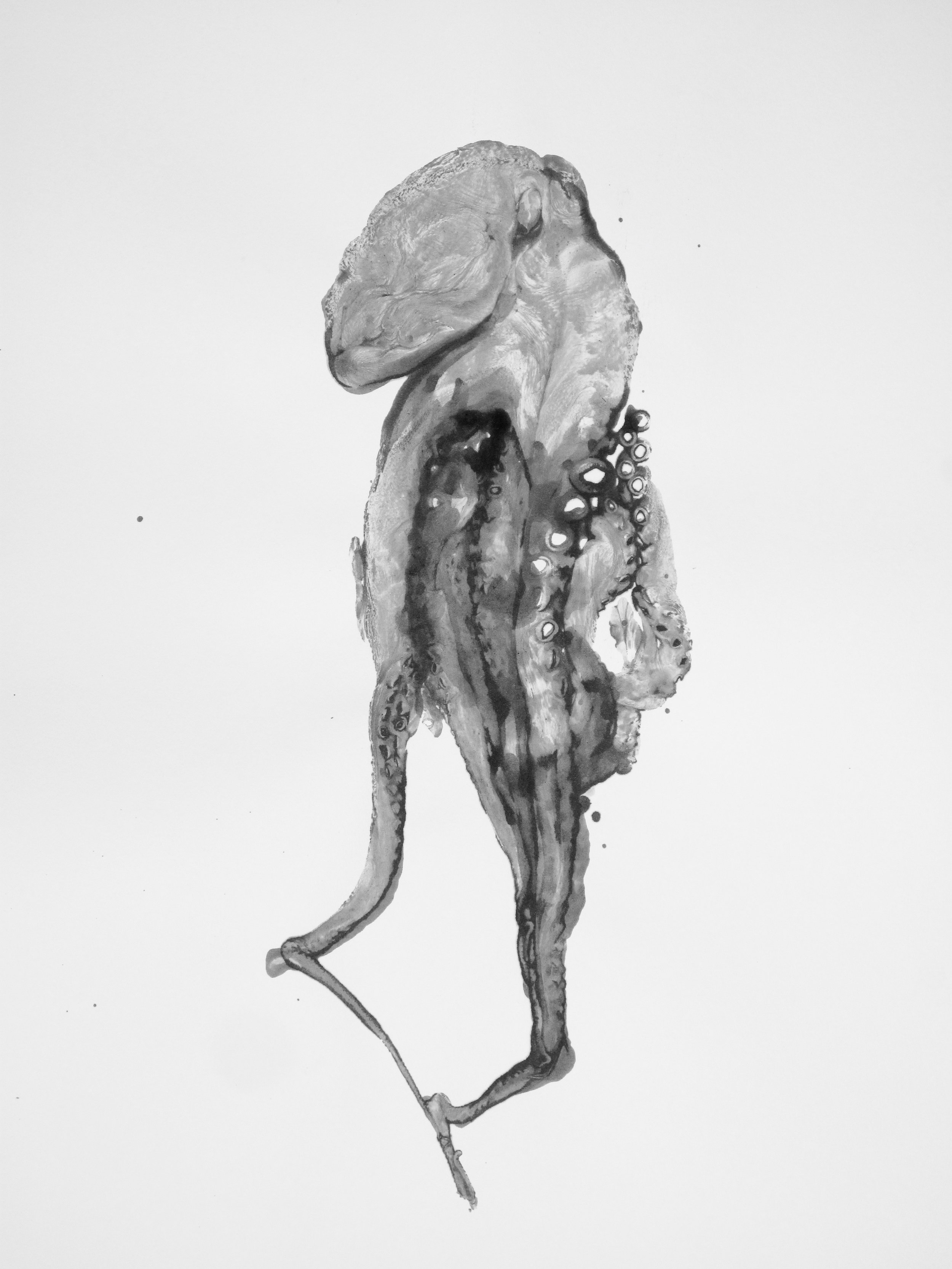 Douglas White,  Octopus 5 , 2016. Encre de poulpe sur papier buvard, 110 cm x 75 cm