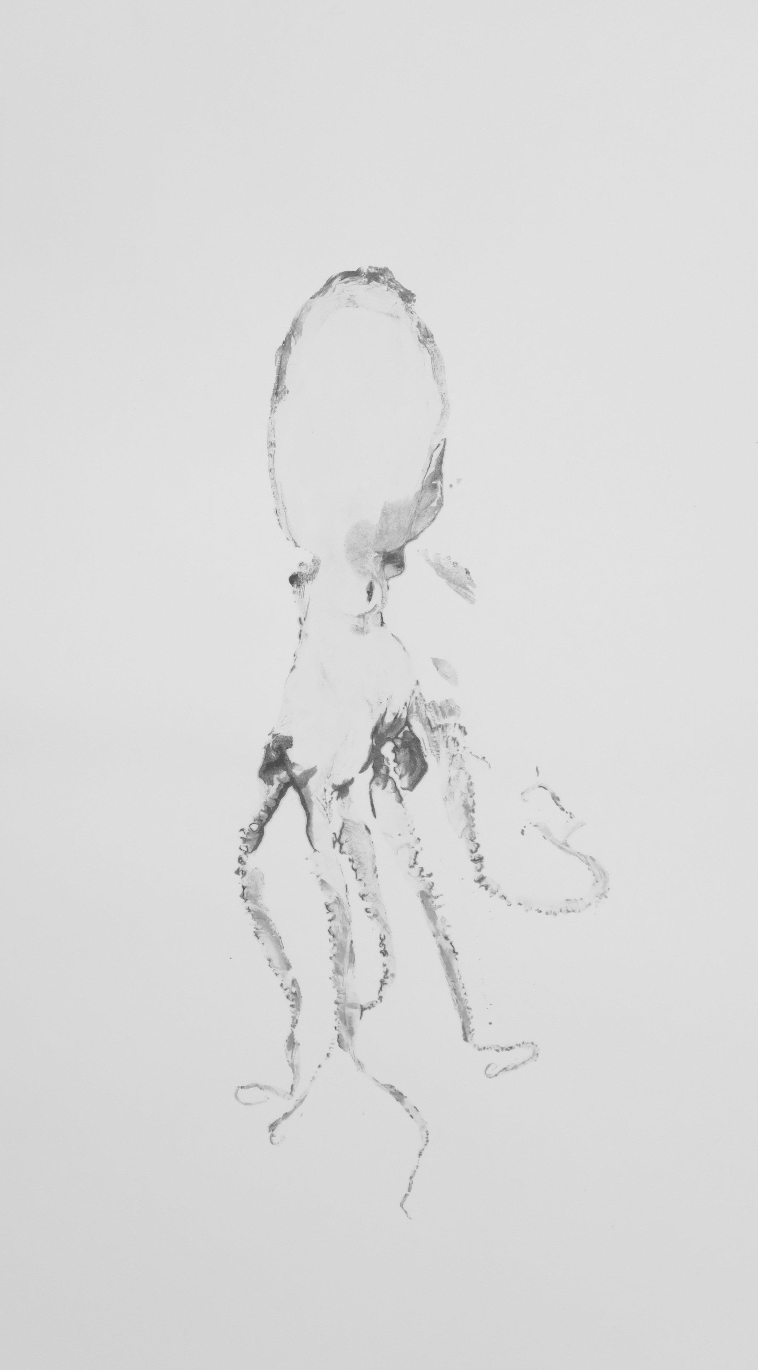 Douglas White,  Octopus 17 , 2016. Encre de poulpe sur papier buvard, 85,1 cm x 55,1 cm