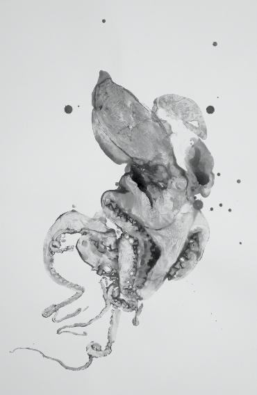 Douglas White,  Octopus 7 , 2016. Encre de poulpe sur papier buvard, 105 cm x 90 cm