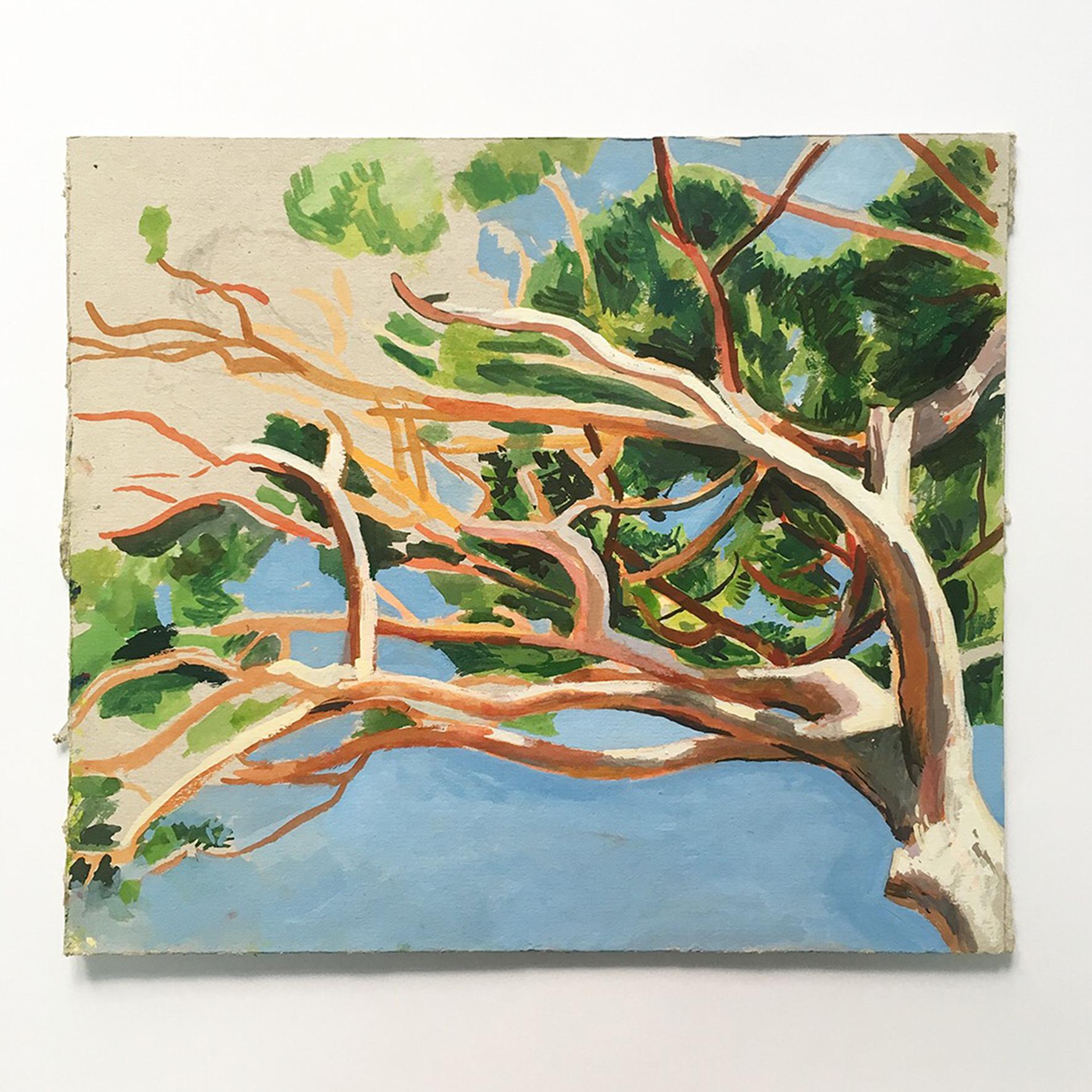Matthieu Cossé,  Étude de pin II , 2016. Gouache sur carton, 29 cm x 25 cm