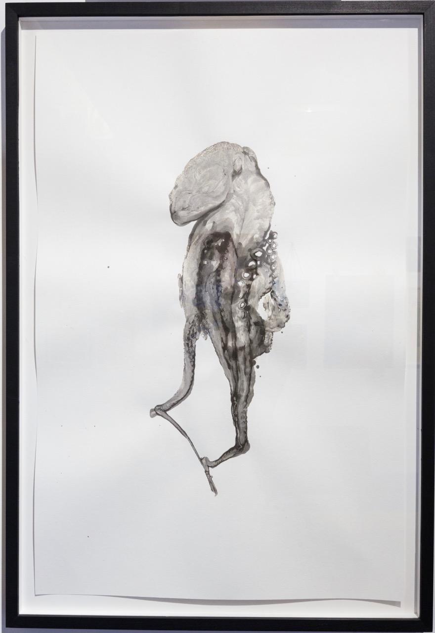 Douglas White,  Octopus 5 , 2016. Encre sur papier, 110 cm x 75 cm