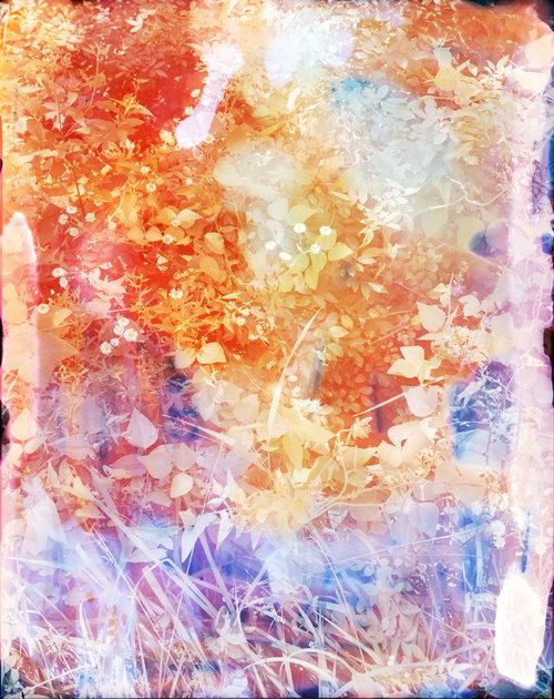 Lavender_spray.jpg