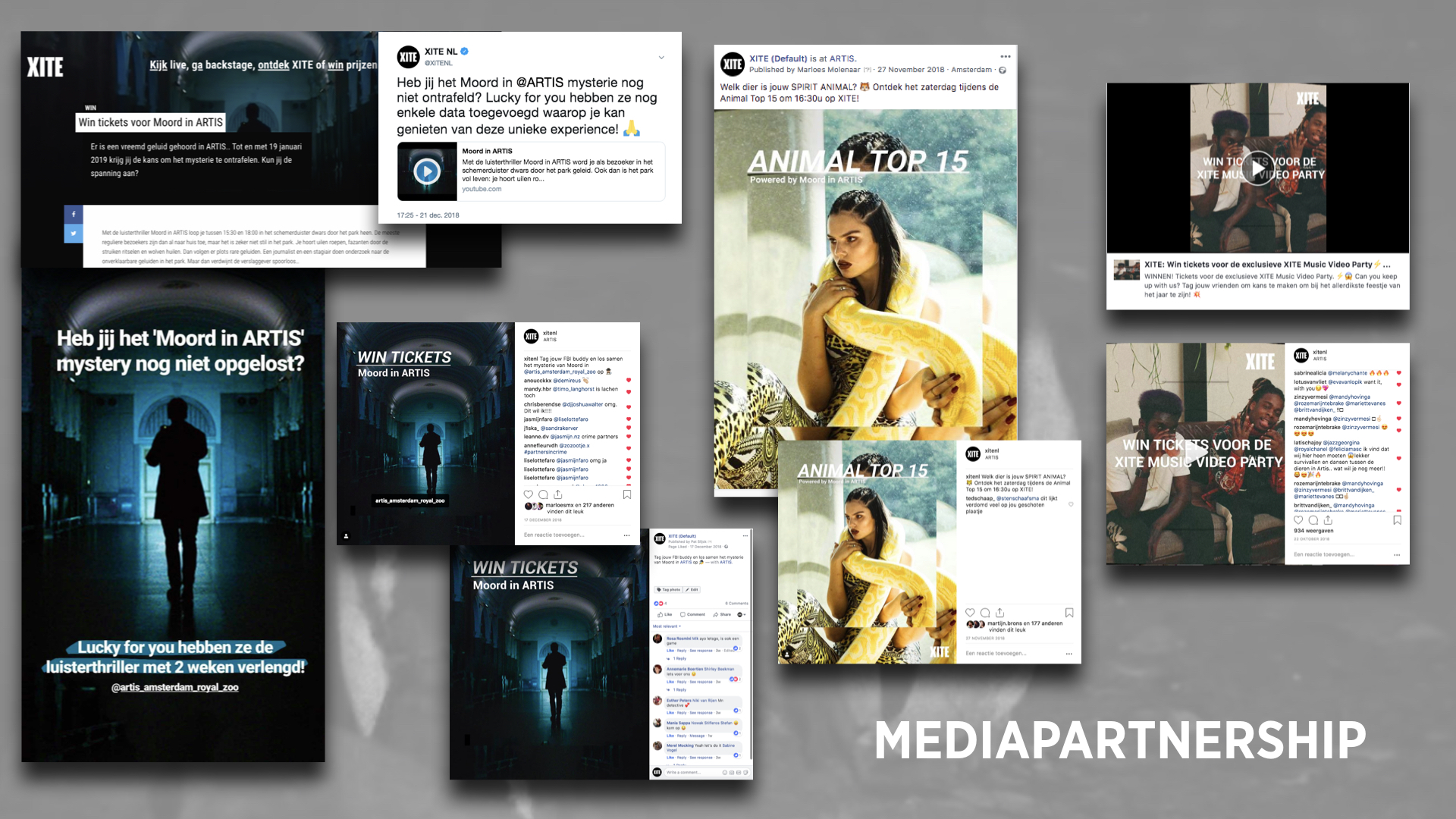 MOORDINARTIS_website_beeld.004.jpeg