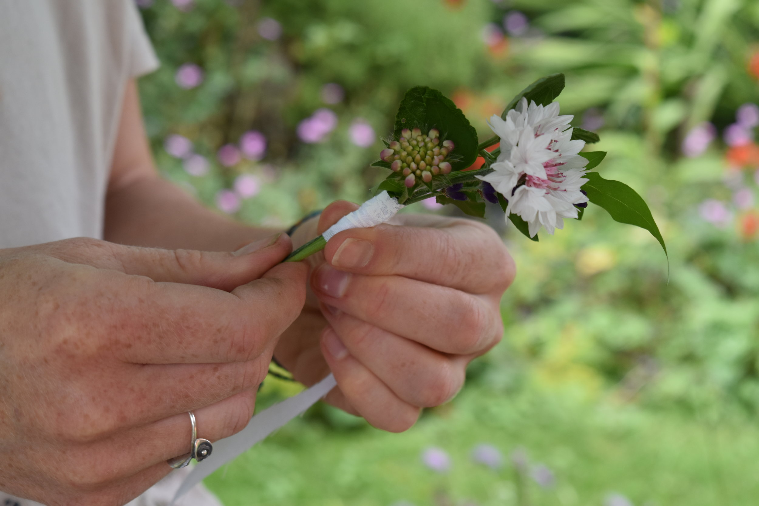 Button holes using pink corn flowers and wild scabious