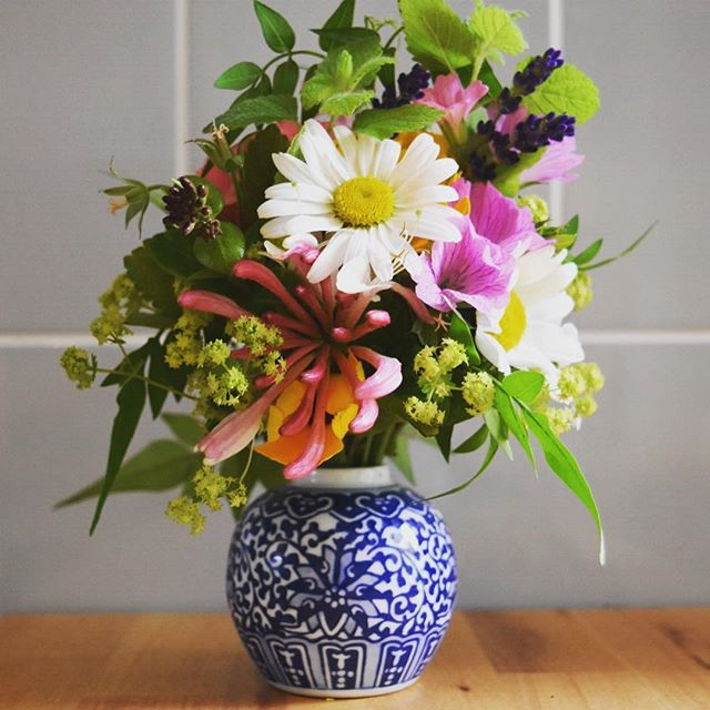 Small but mighty #gardenflowers #britishflowers #homegrown