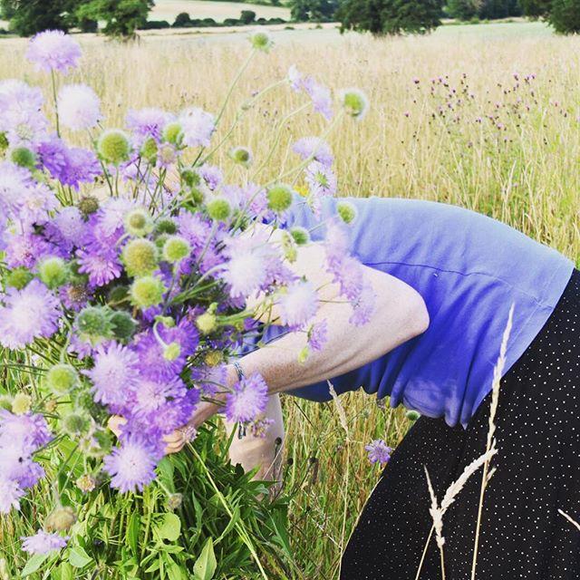 Wild wedding this weekend.. #britishflowers #wildflowers #weddingflowers