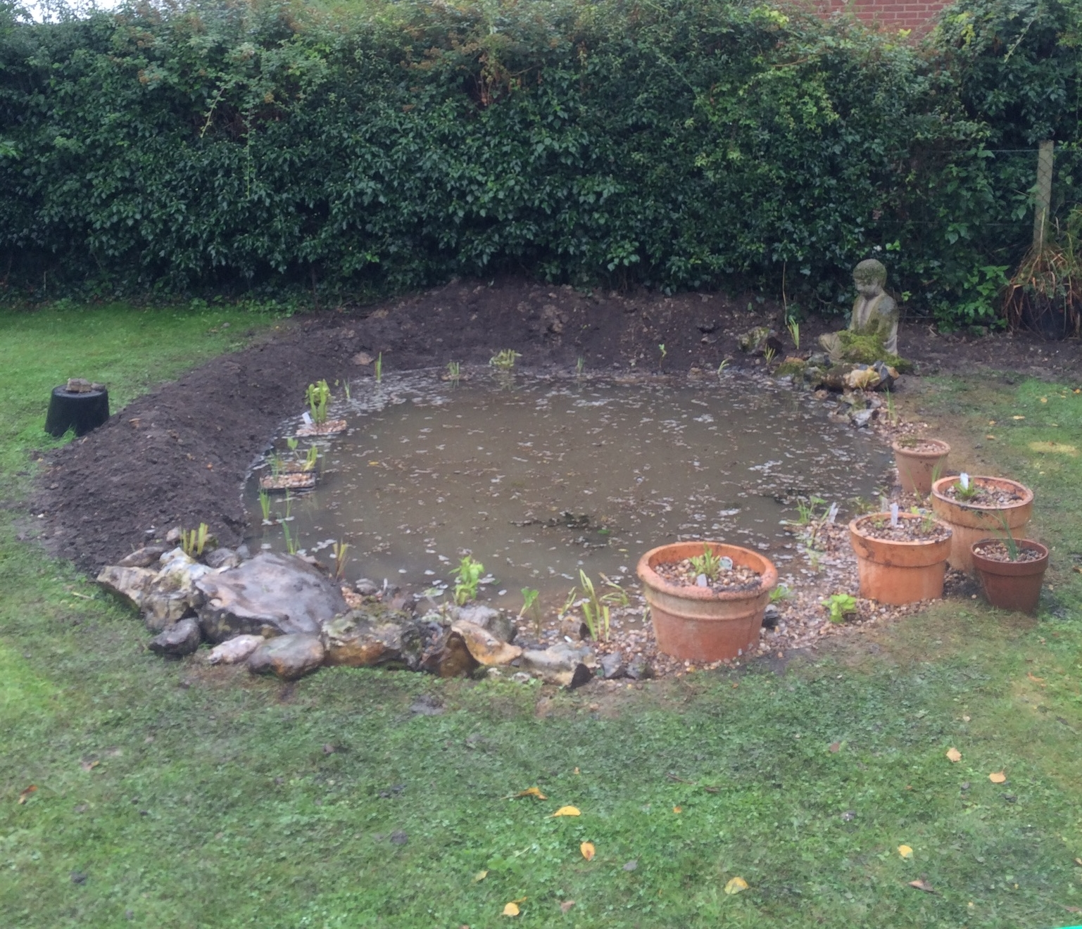 After picture: New pond design completed, with new liner, re planted with native pond species and re-leveld to include shelve and long sloping side for wildlife access.
