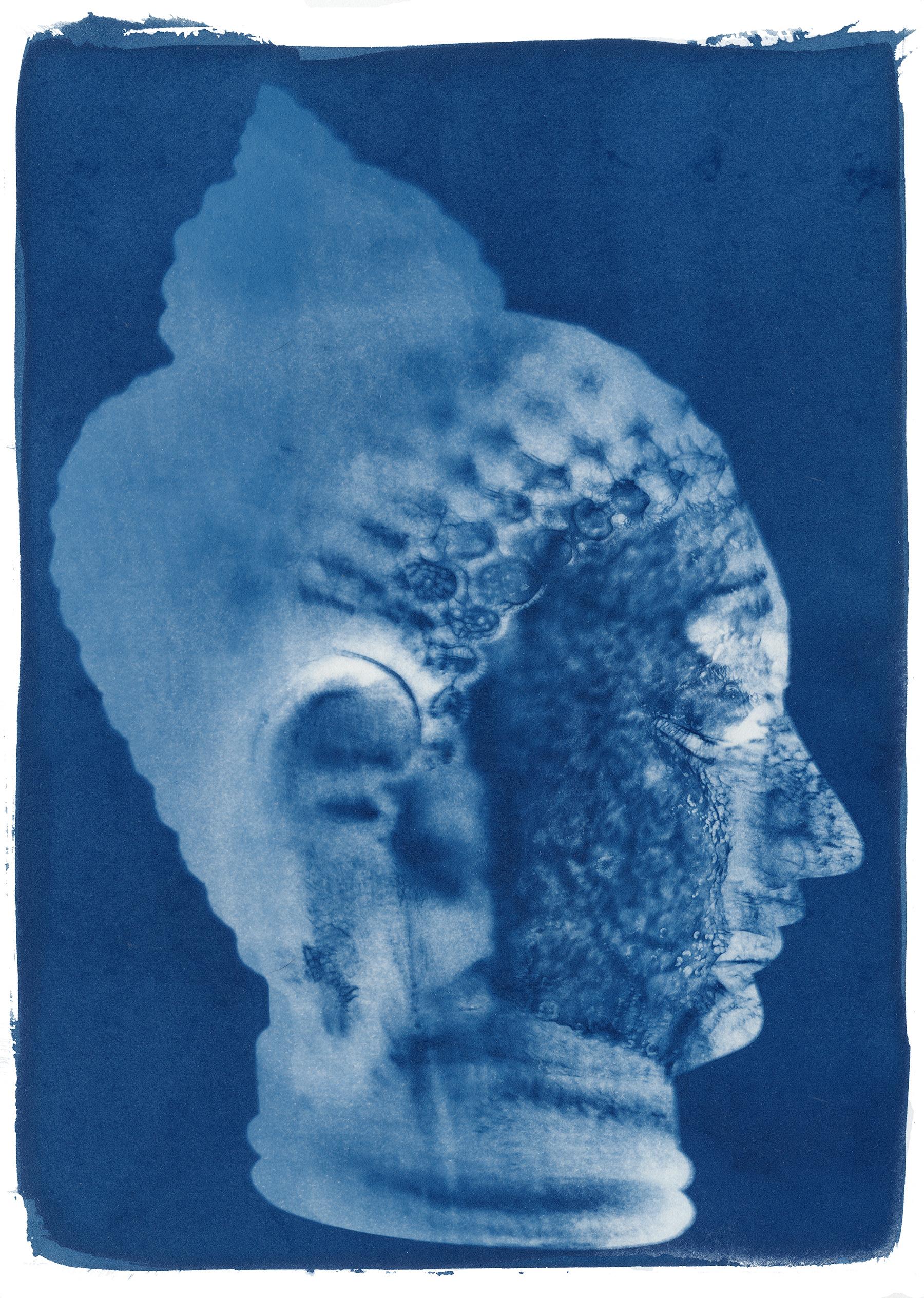 Buddha No. 1, 2011