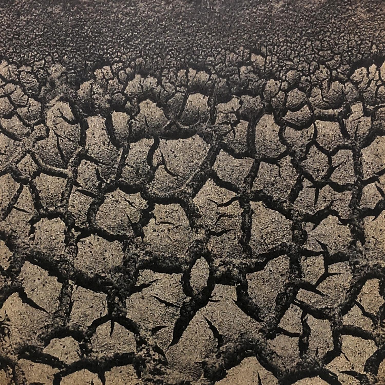 Dried Mud, 2016
