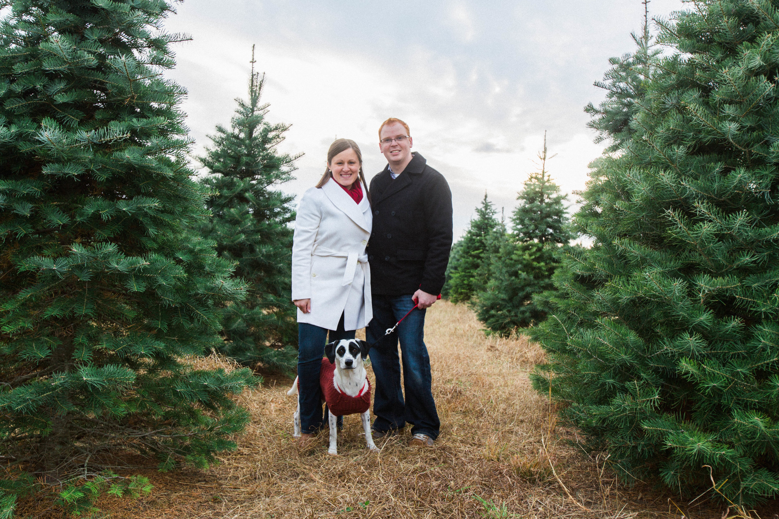 CHRISTMAS_TREE_FARM_ENGAGEMENT_PHOTOS--0003.jpg