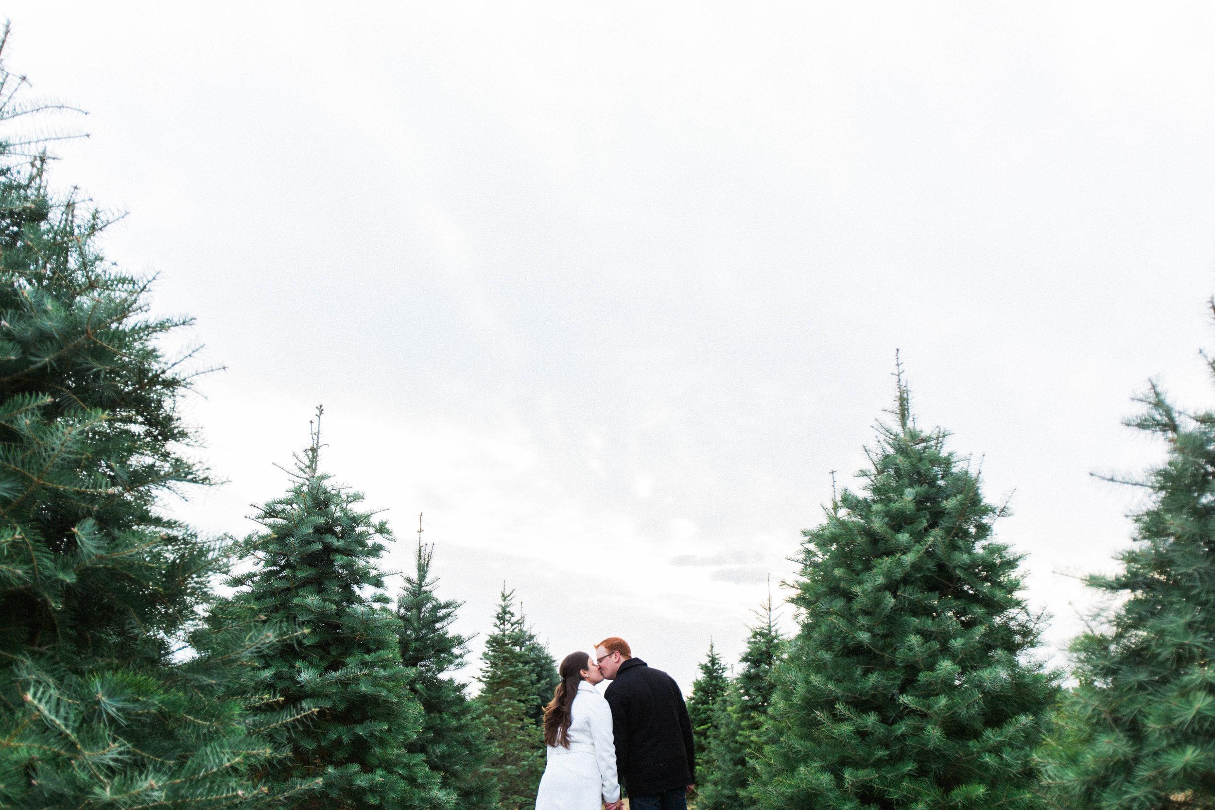 CHRISTMAS_TREE_FARM_ENGAGEMENT_PHOTOS--0062.jpg
