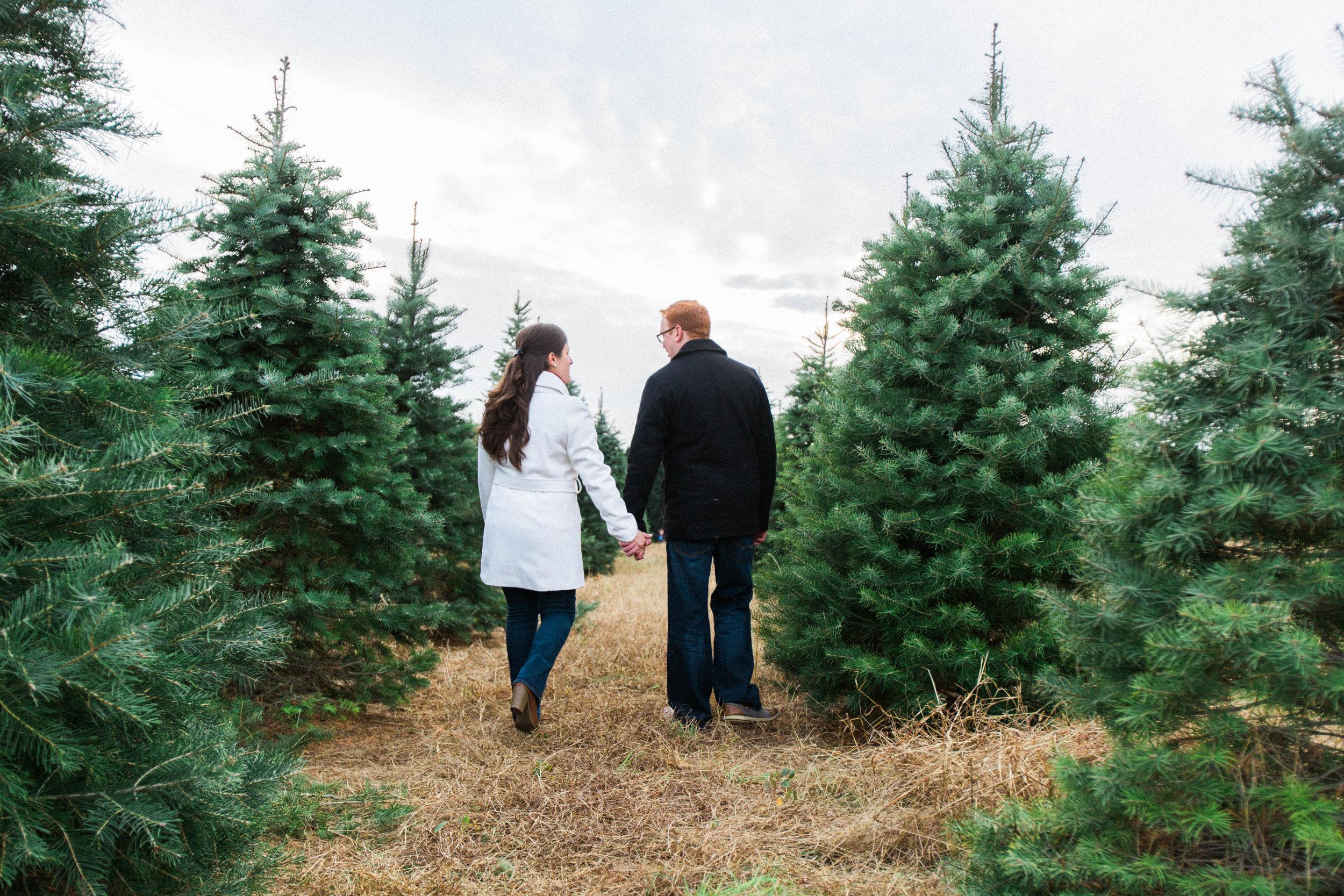 CHRISTMAS_TREE_FARM_ENGAGEMENT_PHOTOS--0050.jpg
