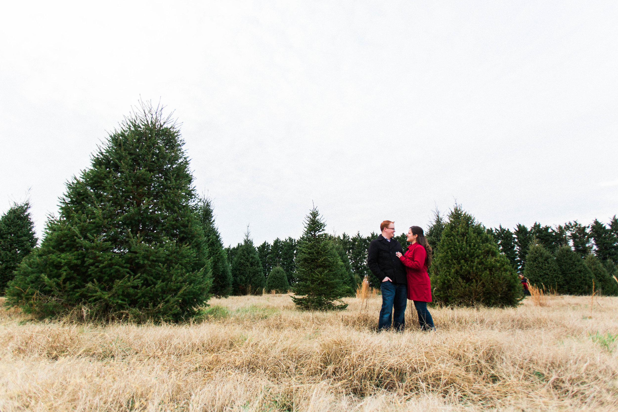 CHRISTMAS_TREE_FARM_ENGAGEMENT_PHOTOS--0089.jpg