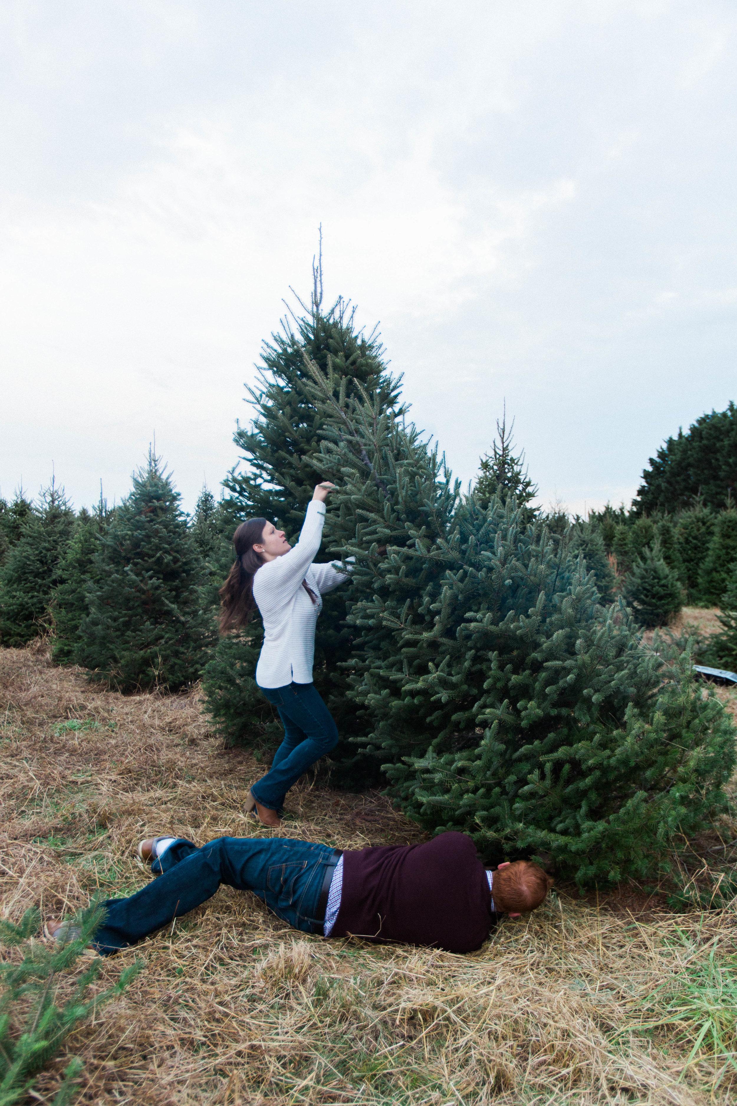 CHRISTMAS_TREE_FARM_ENGAGEMENT_PHOTOS--0550.jpg