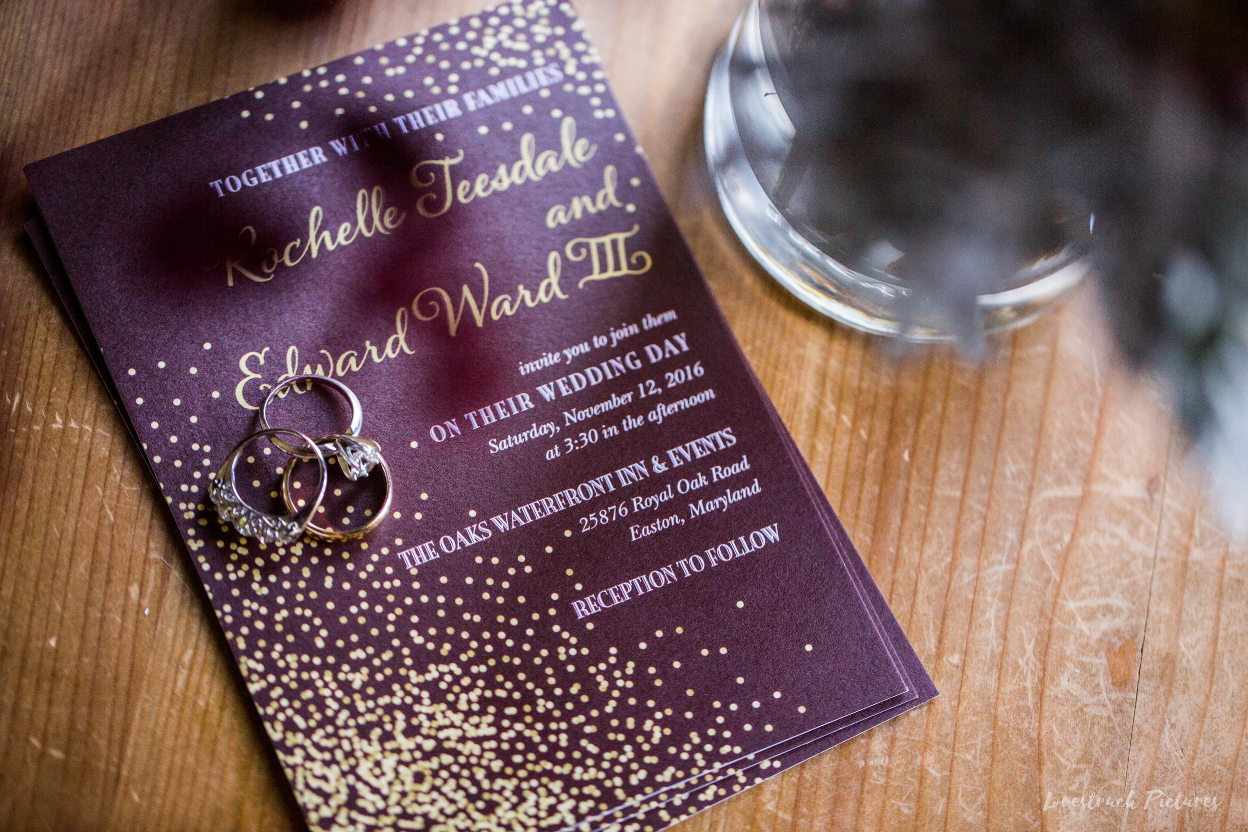 THE_OAKS_ON_THE_WATERFRONT_MARYLAND_WEDDING--8212.jpg
