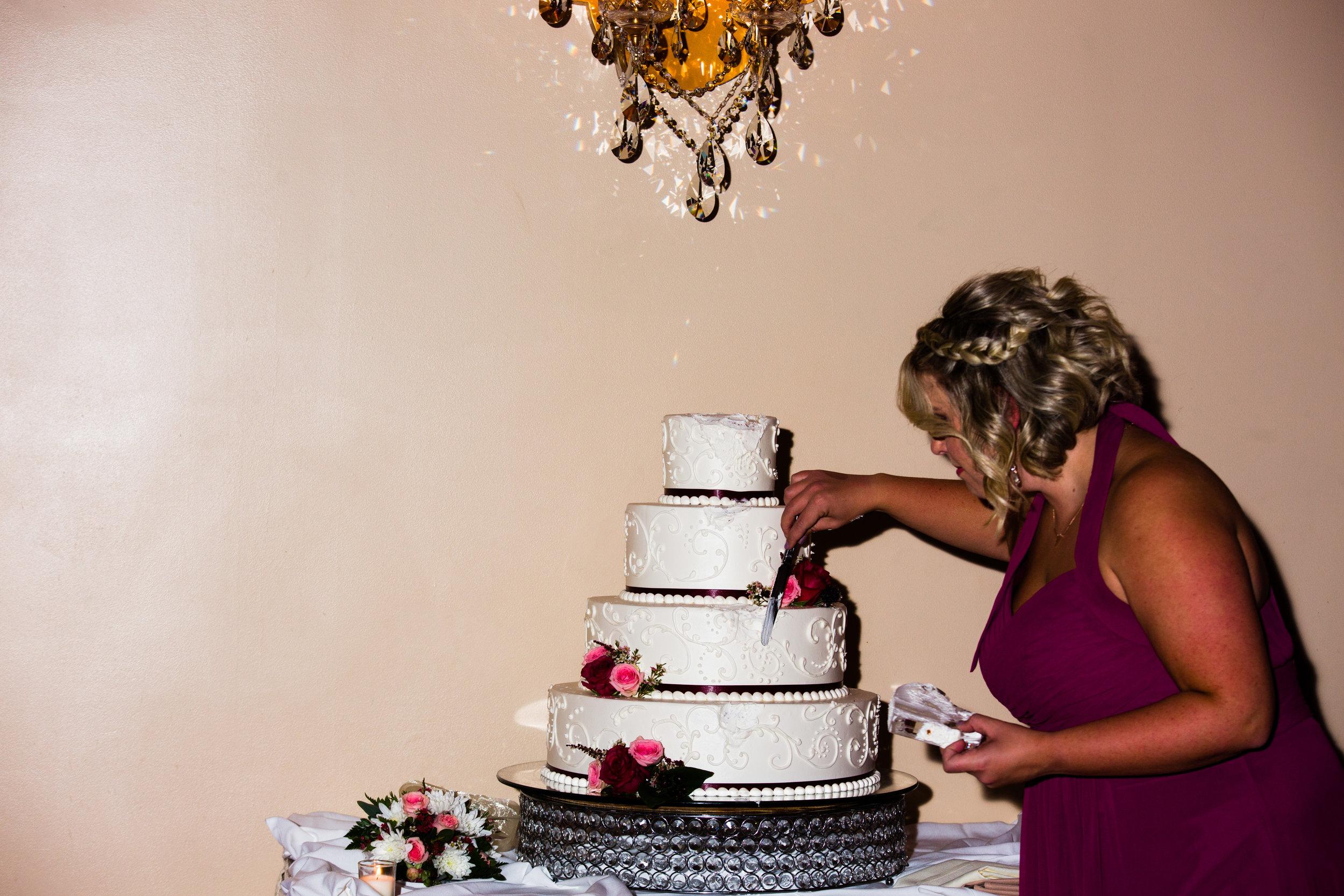 Luciens Manor Wedding Photos - 101.jpg
