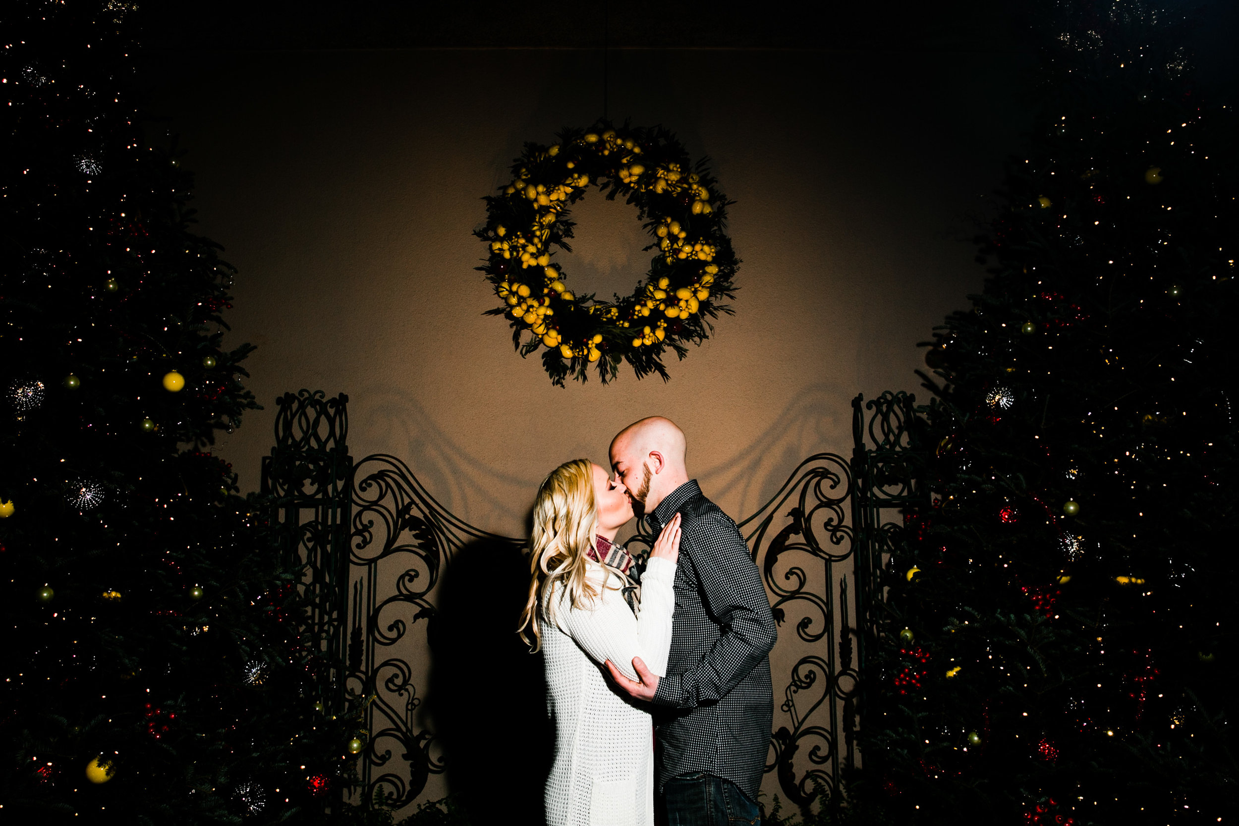 Longwood Garden Christmas Engagement Shoot -013.jpg