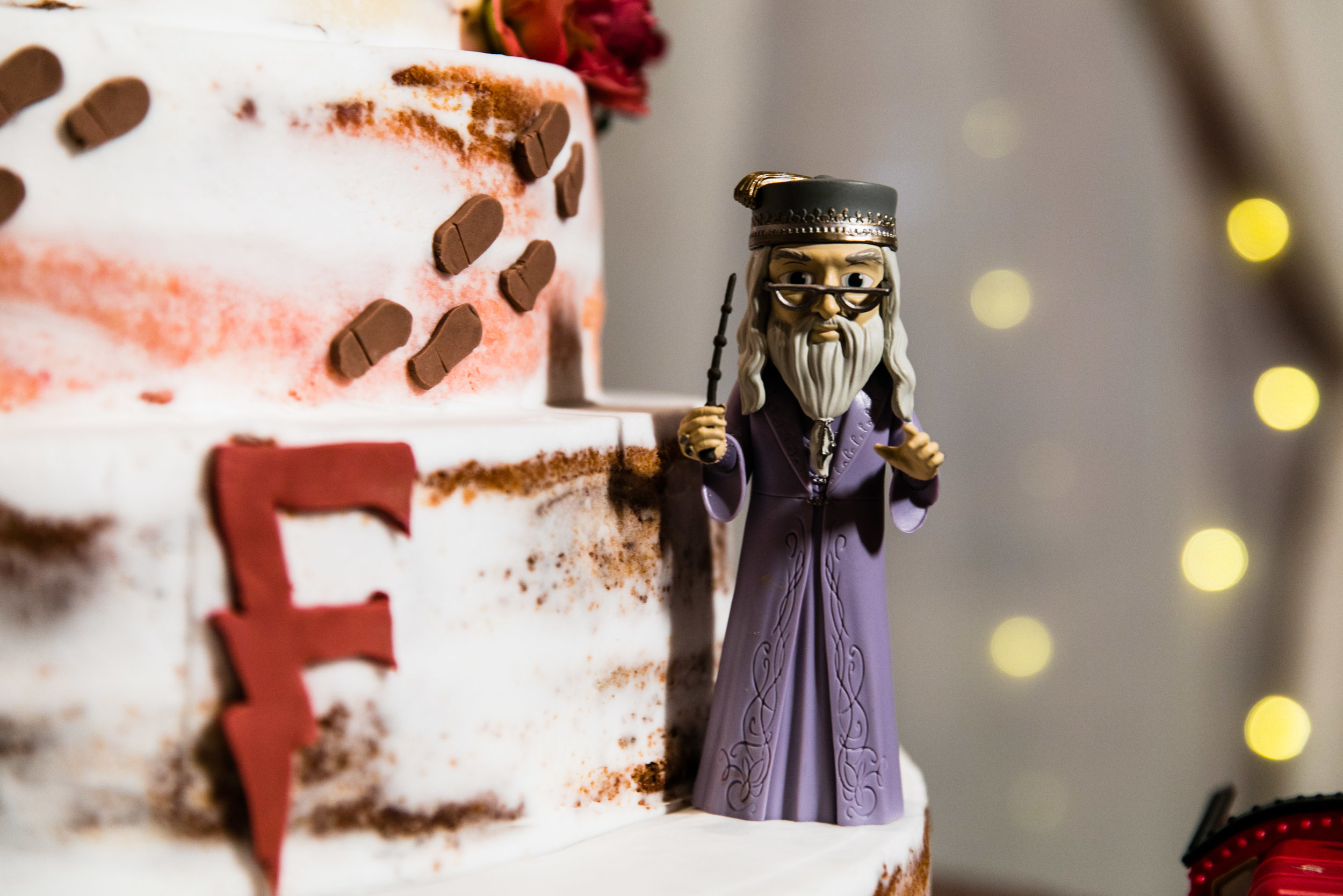Ashly and Joe - Felt Factory Wedding - Harry Potter Themed Wedding - 121.jpg