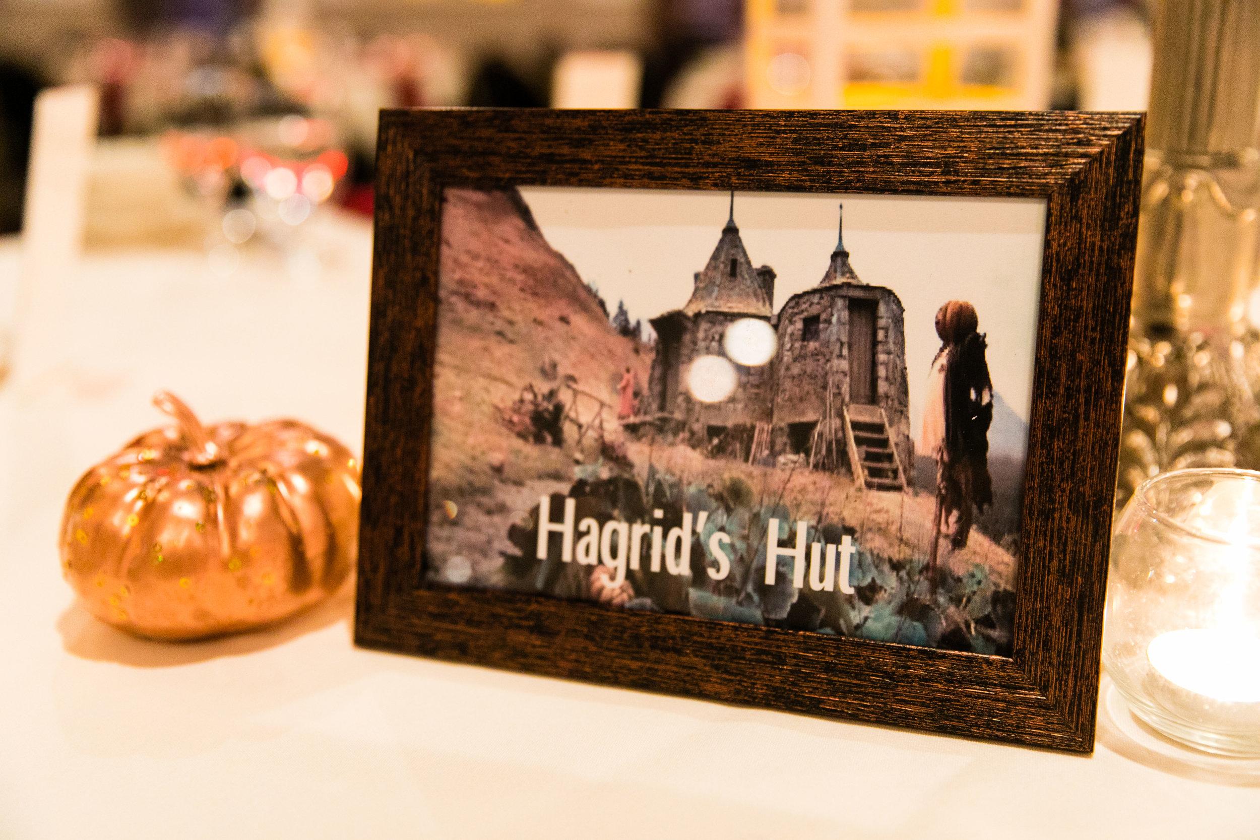 Ashly and Joe - Felt Factory Wedding - Harry Potter Themed Wedding - 144.jpg