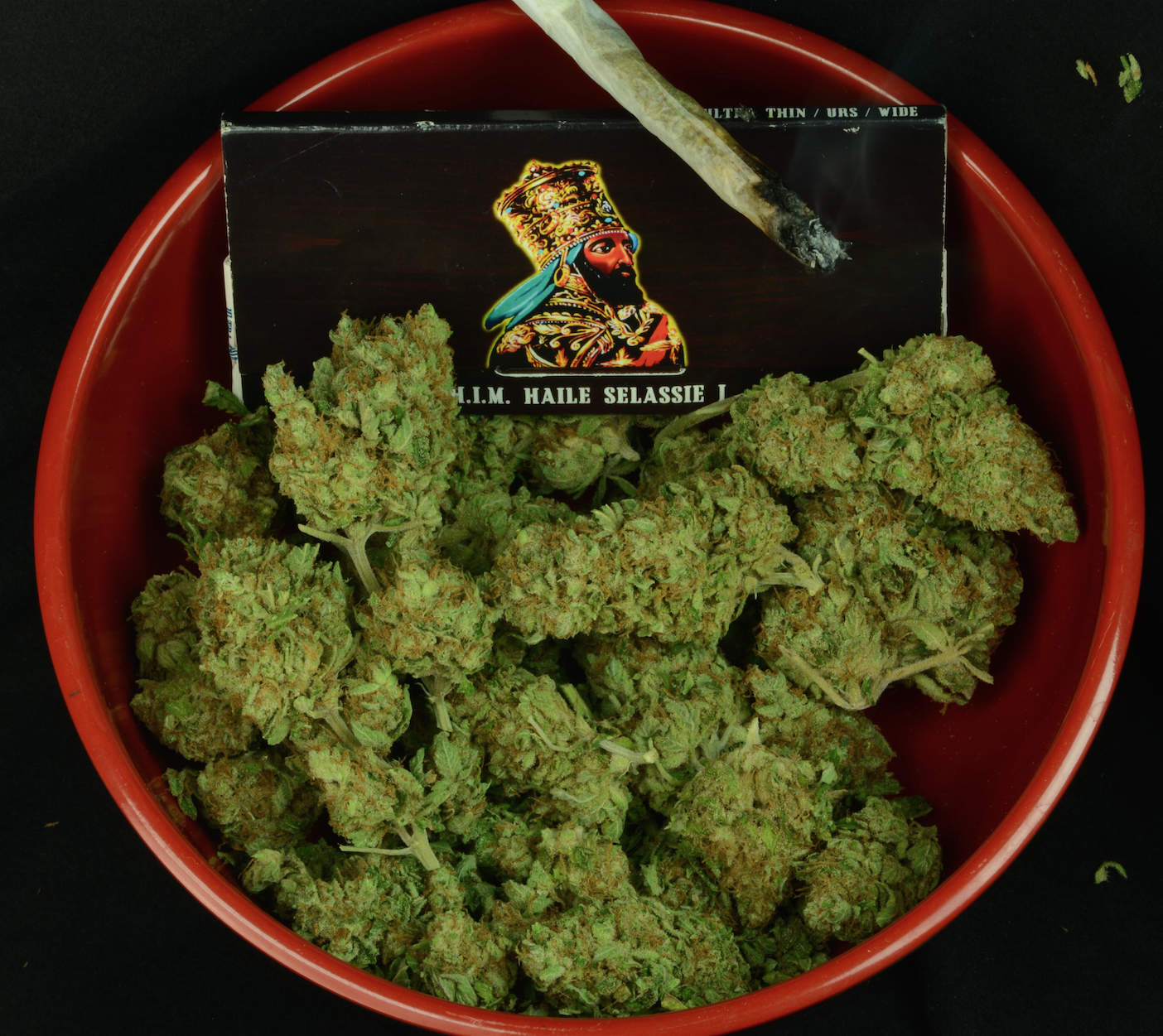 ZiggiPapers and fuel for the fire