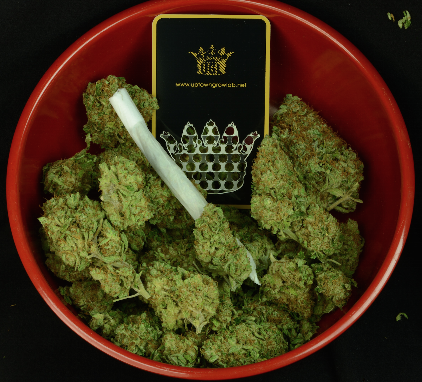 Chronic and a Grinder Card