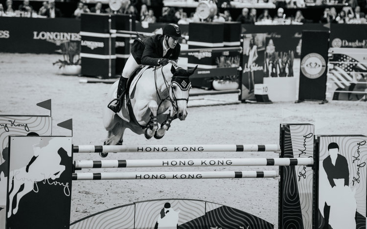 horse shows -
