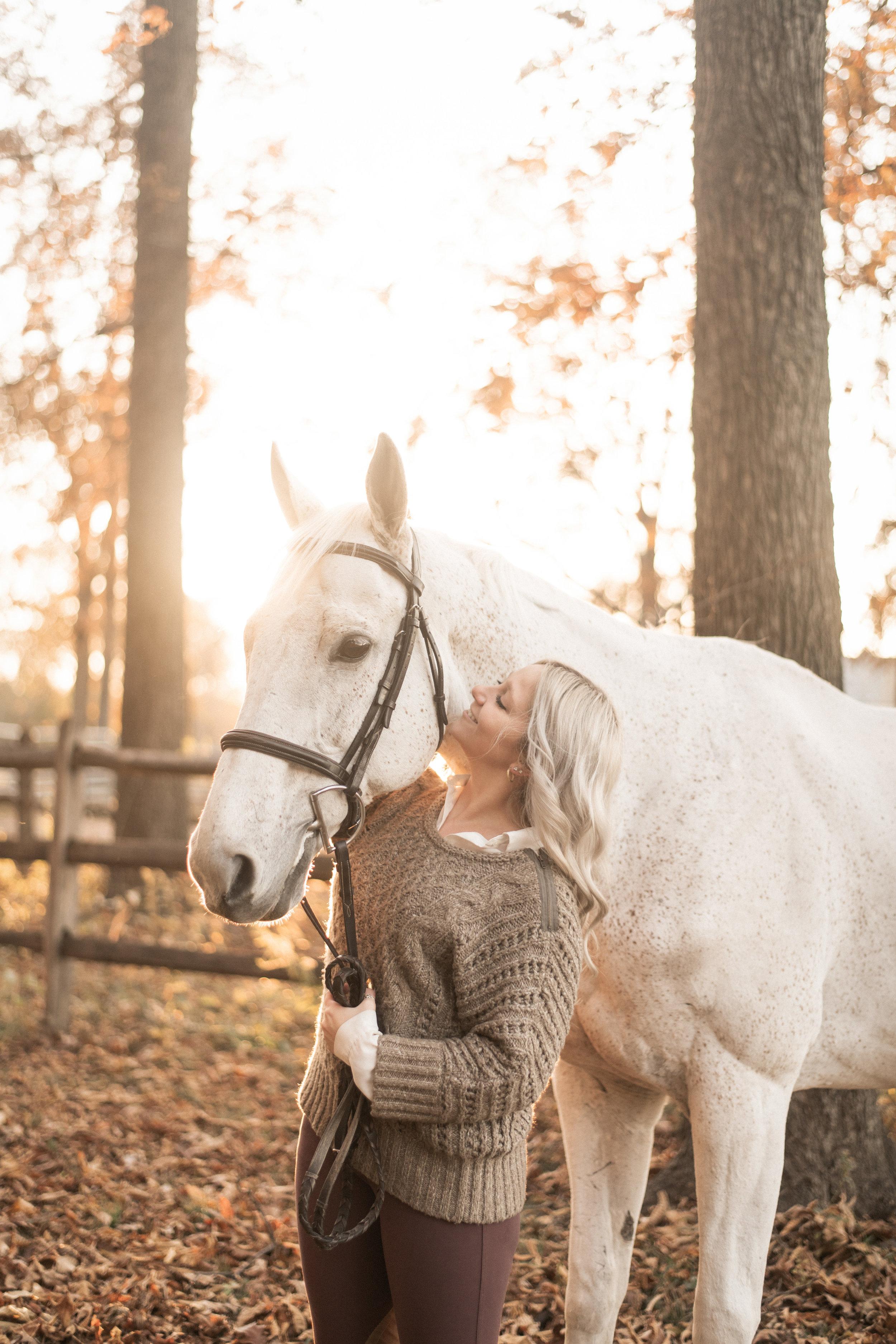 horse + rider -