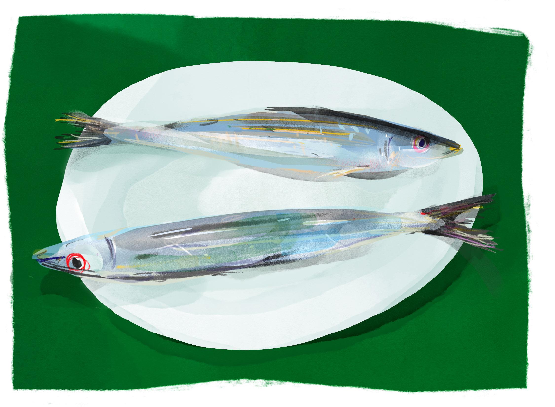 fishplate.jpg