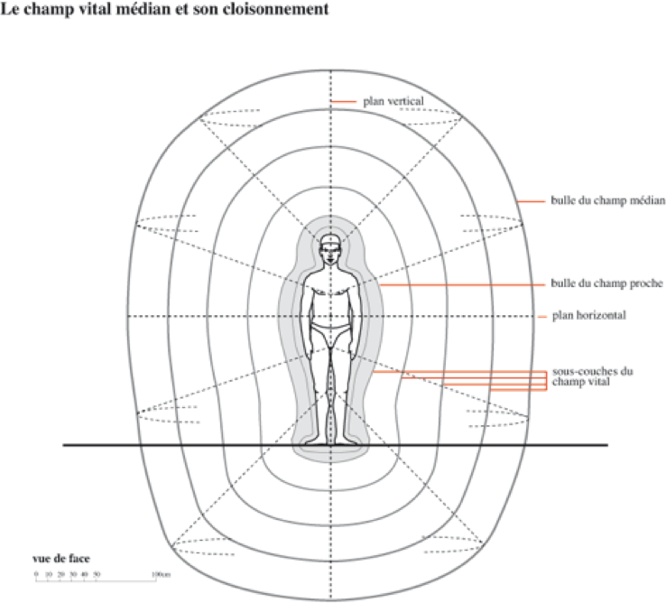 Représentation du corps éthérique (« en pelures d'oignon »)