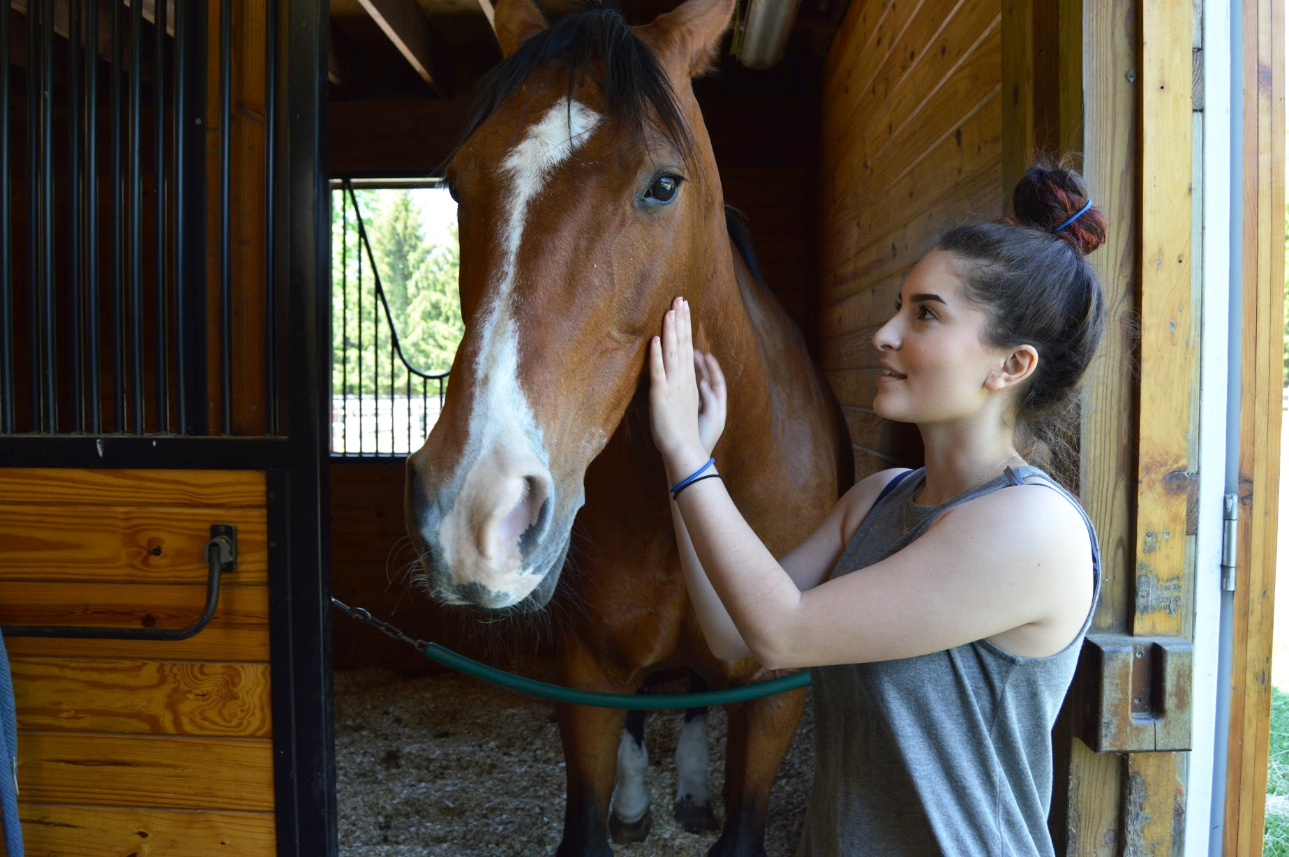 Lauren Meyers at   New Canaan Mounted Troop  .