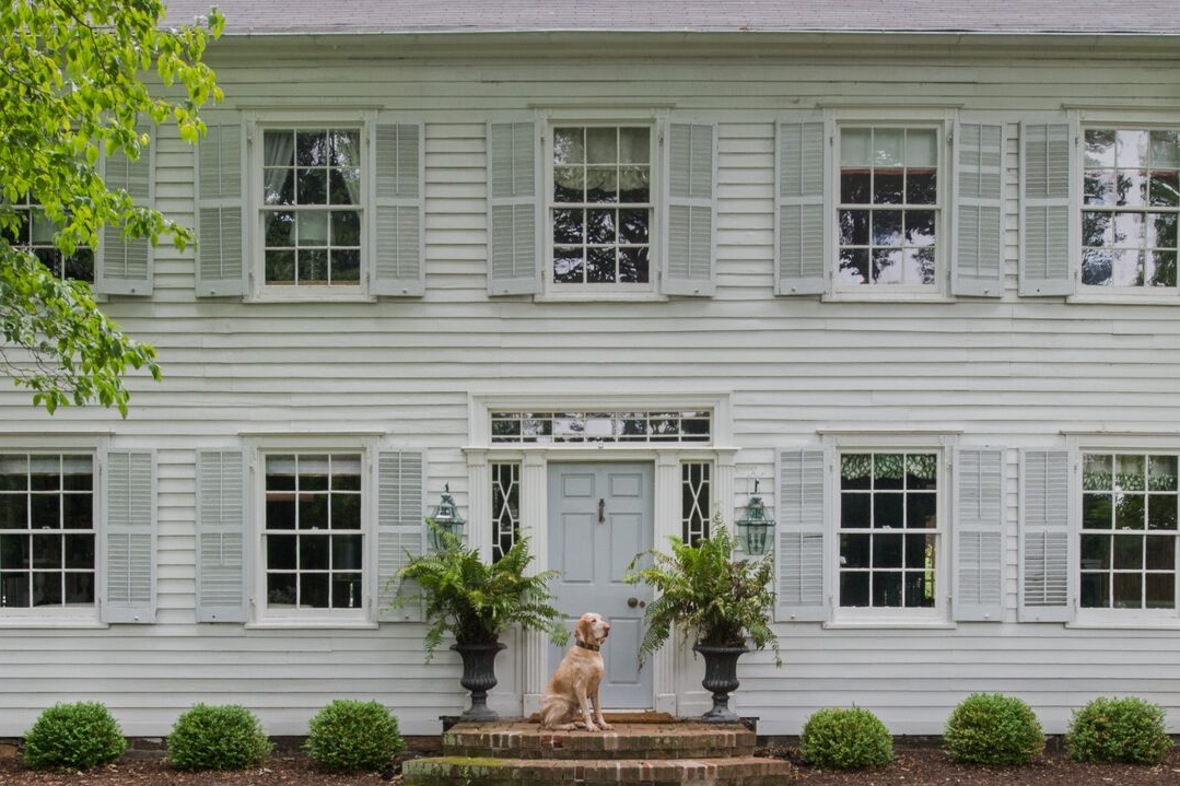 6. CONSIDER YOUR PETS •  Interiors: Brittany Bromley Interiors