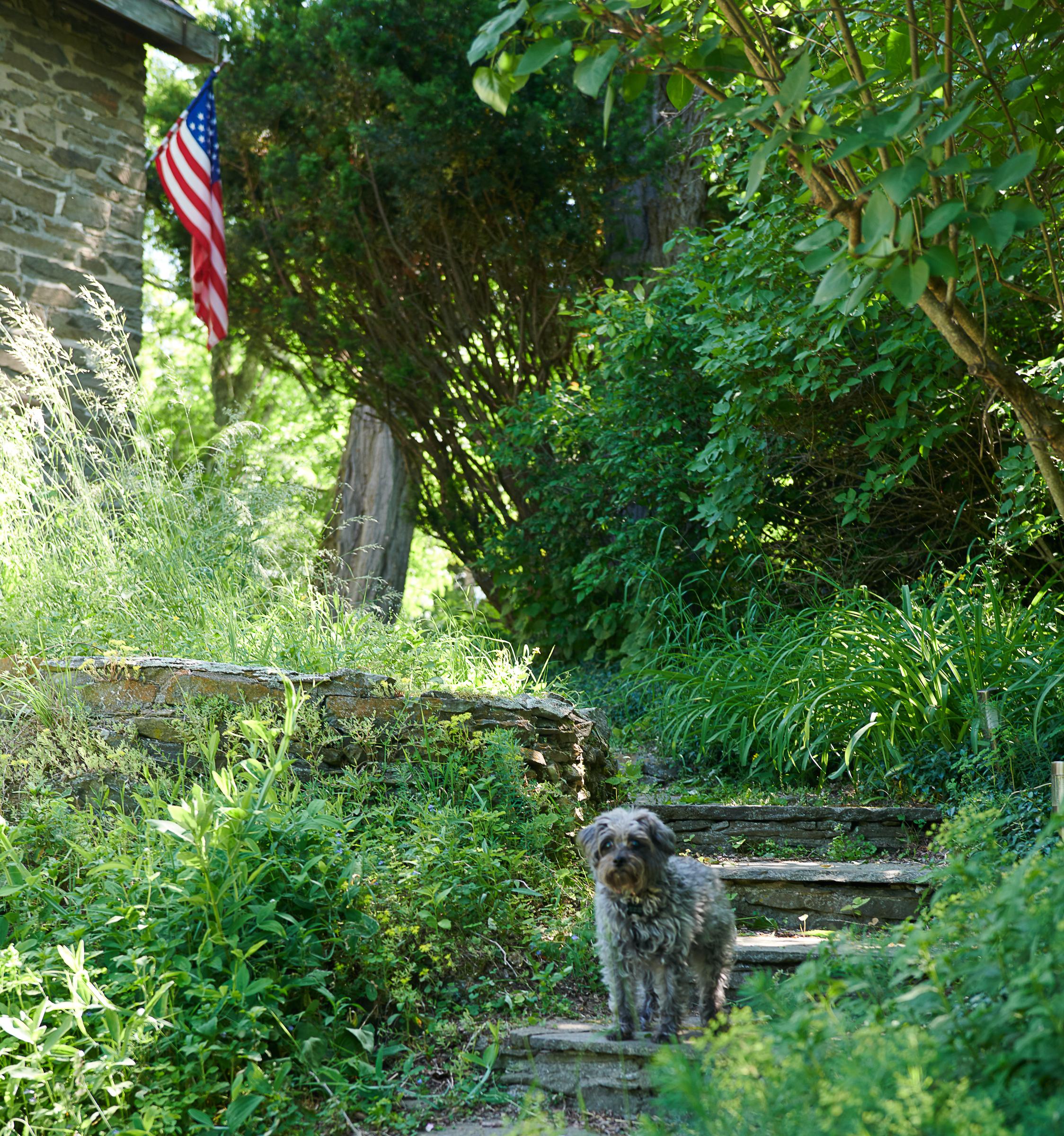 Beiles On Location Germantown-1184.jpg