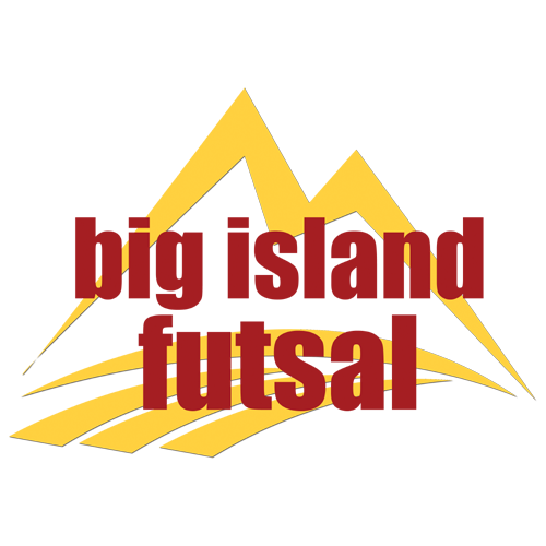 500x500 big island futsal.png