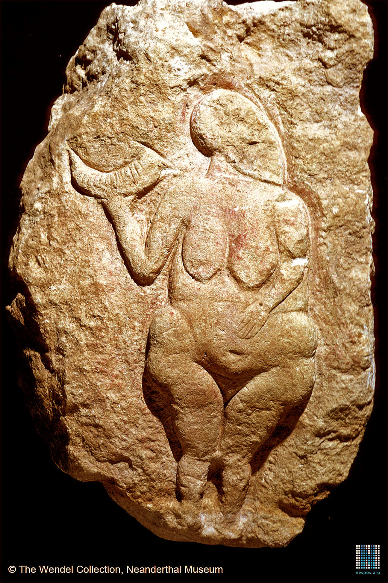 Venus of Laussel, a 25,000-year-old carving found in the Dordogne region of France. This carving is one of hundreds of carvings and figurines of women, most likely goddesses, from the Upper Paleolithic era.