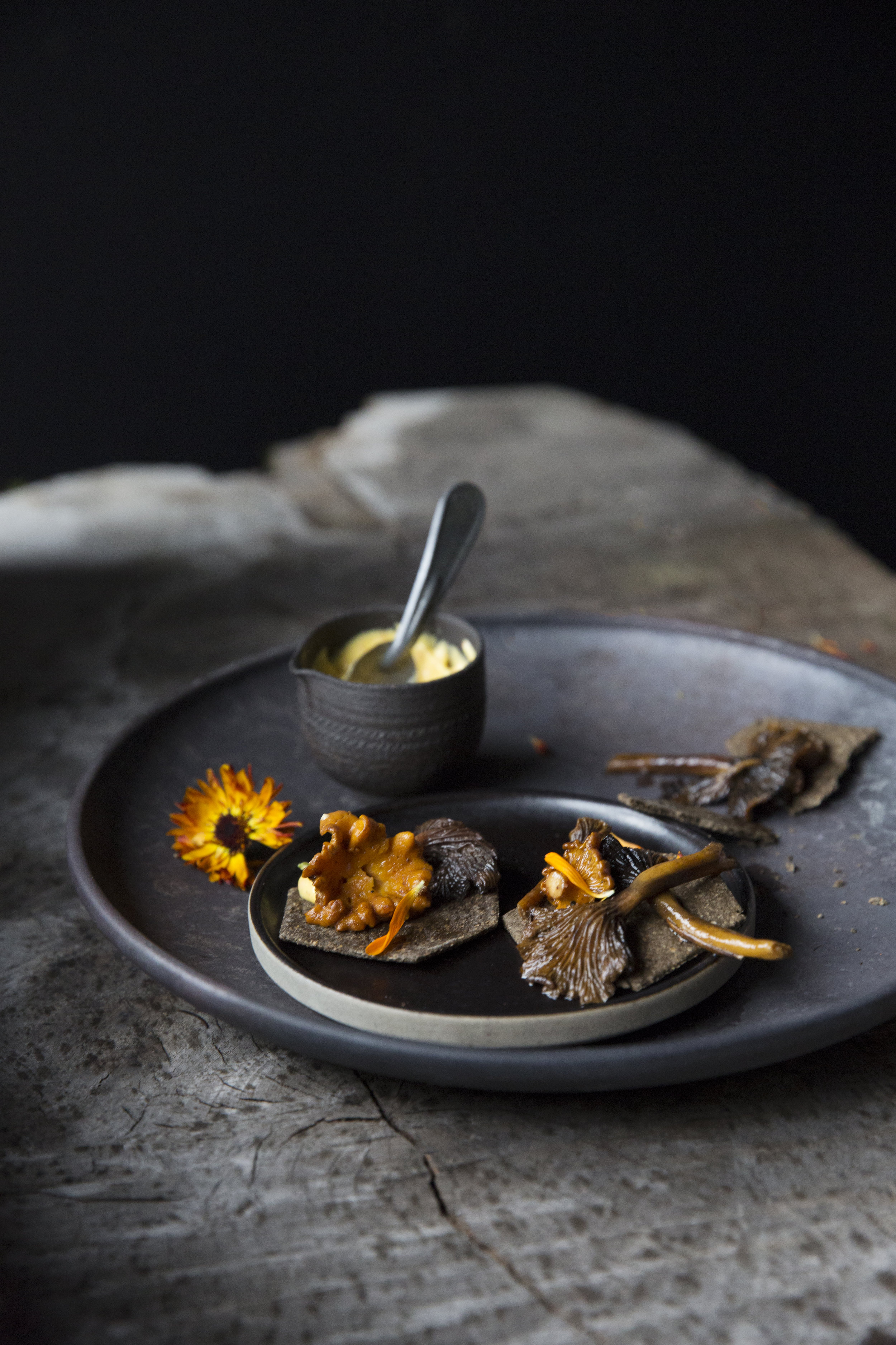 Roasted Mushroom with Marigold Sauce and Ash Crackers Toronto Food photographer
