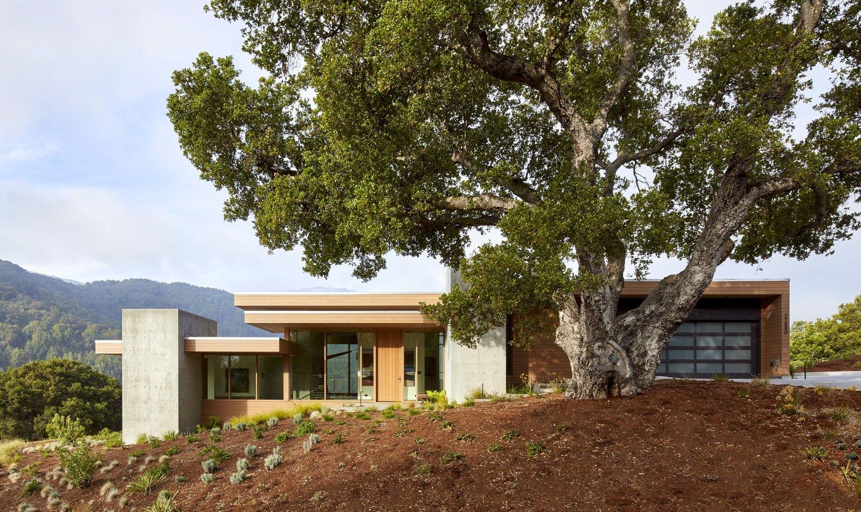 Blue Oaks House