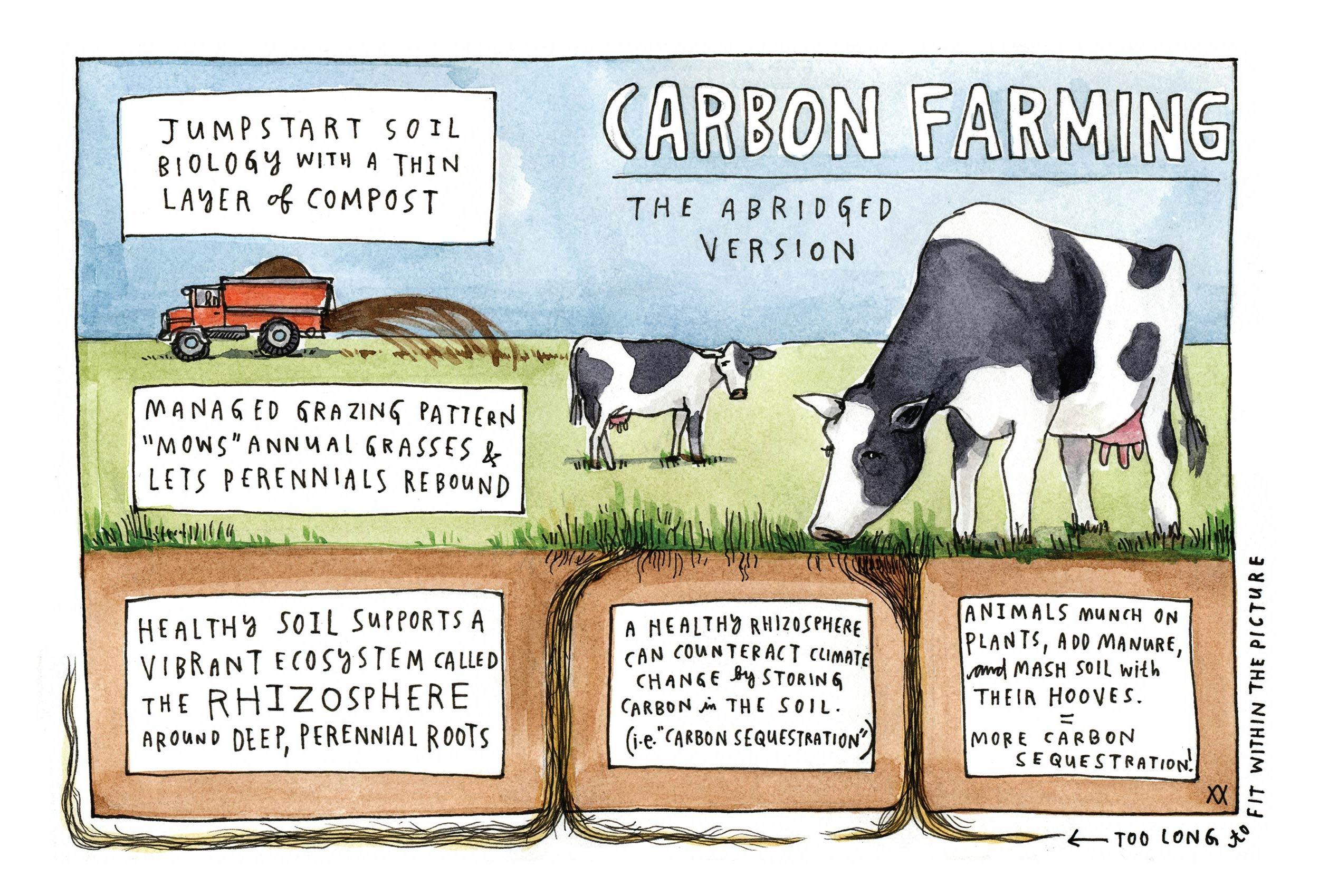 PostcardPerennial-CarbonFarming-FRONT copy.jpg
