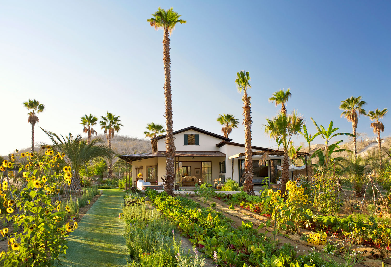 Culinary-Cottages-Flora-Farms-web.jpg