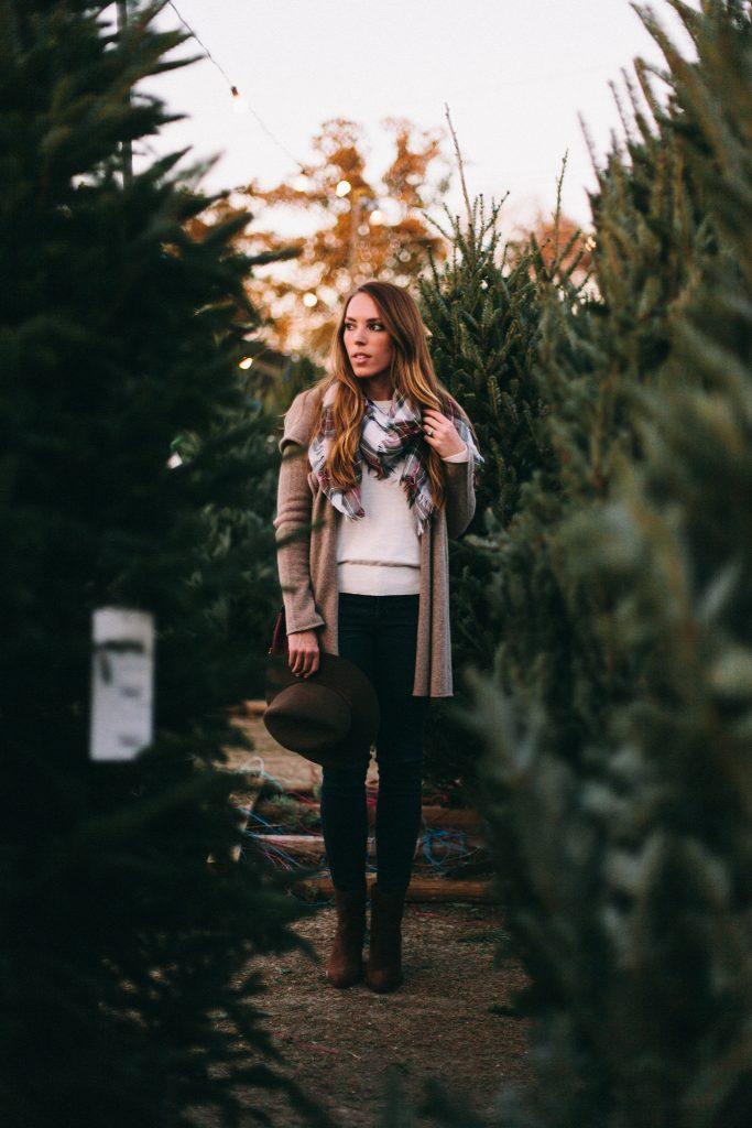 Christmastrees8-683x1024.jpg