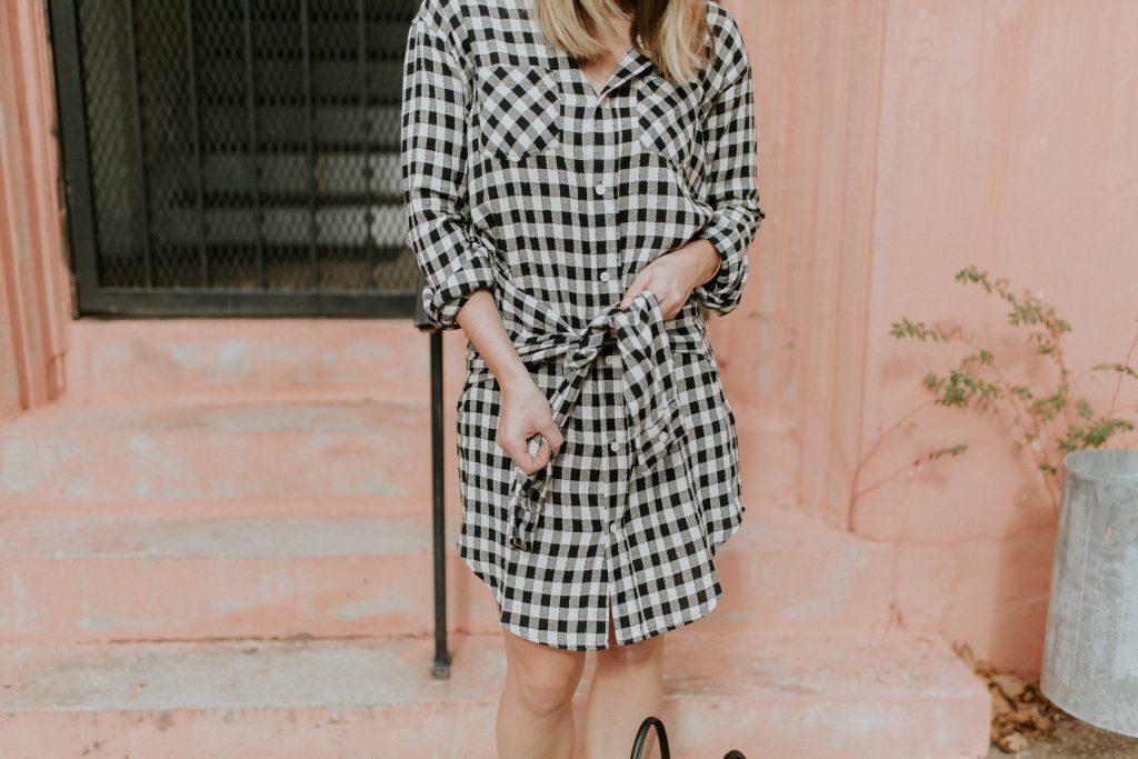 Blogger-Gracefully-Taylored-in-CurrentElliott-Dress21-1024x683.jpg