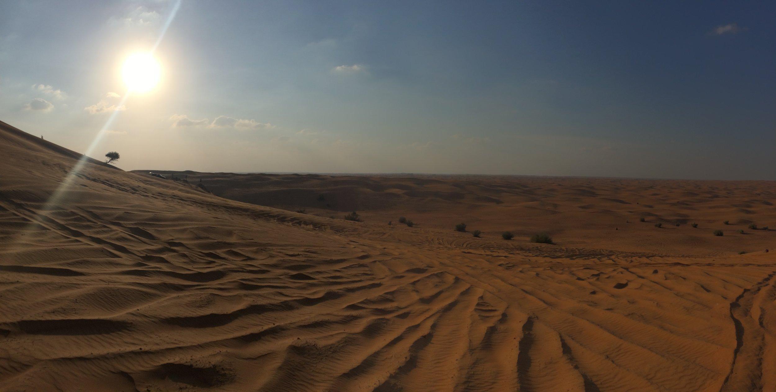 Dubai Sand Dunes B  - 4.JPG