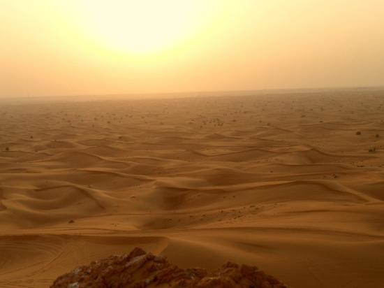 dubai-desert-conservation.jpg