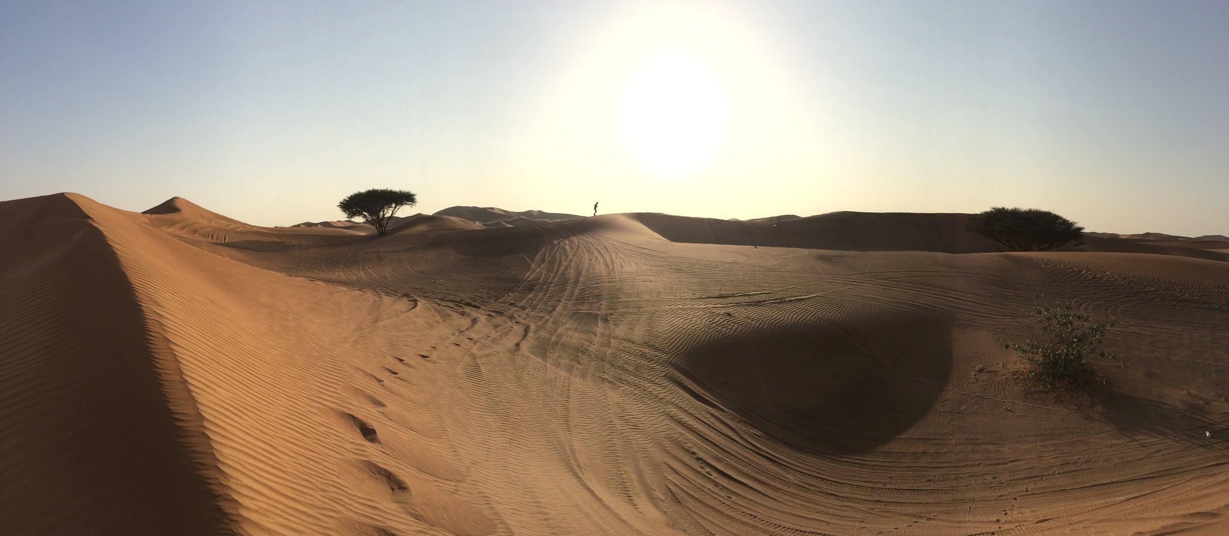 Dubai Dunes - 7.JPG