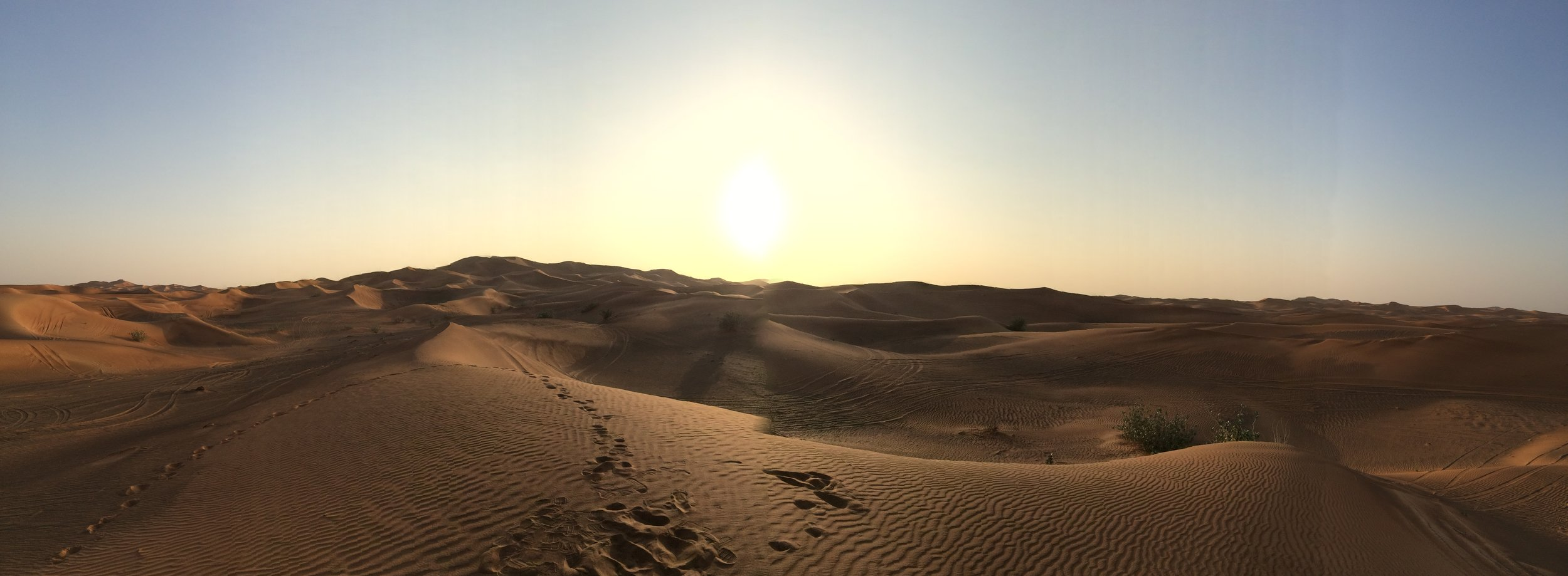 Dubai Dunes - 10.JPG