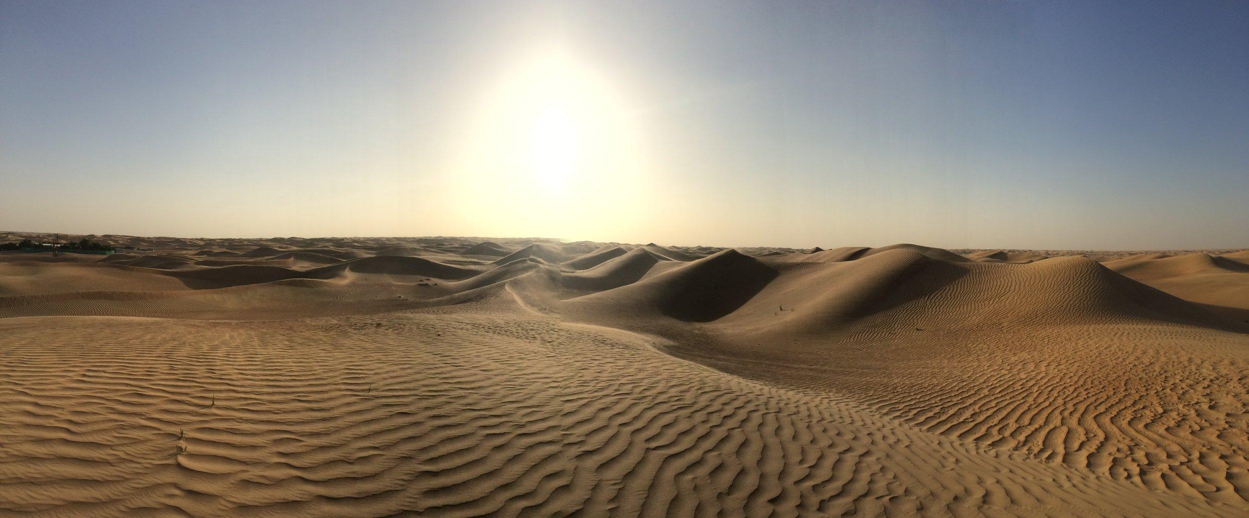 Dubai Dunes - 20.JPG