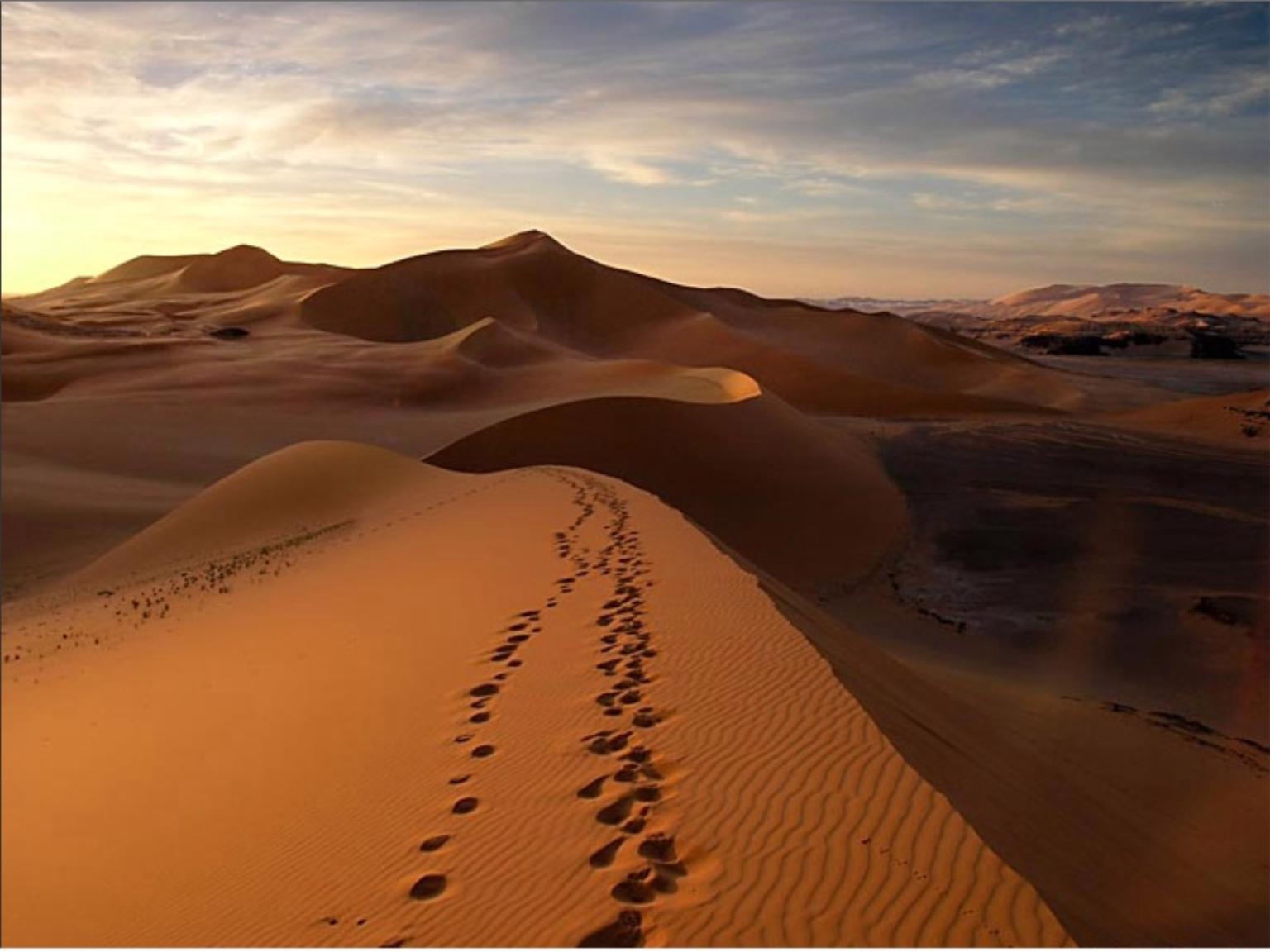 Hotel-ERFOUD-Riad-ERFOUD-5-12084030052009-dune sahara.jpg